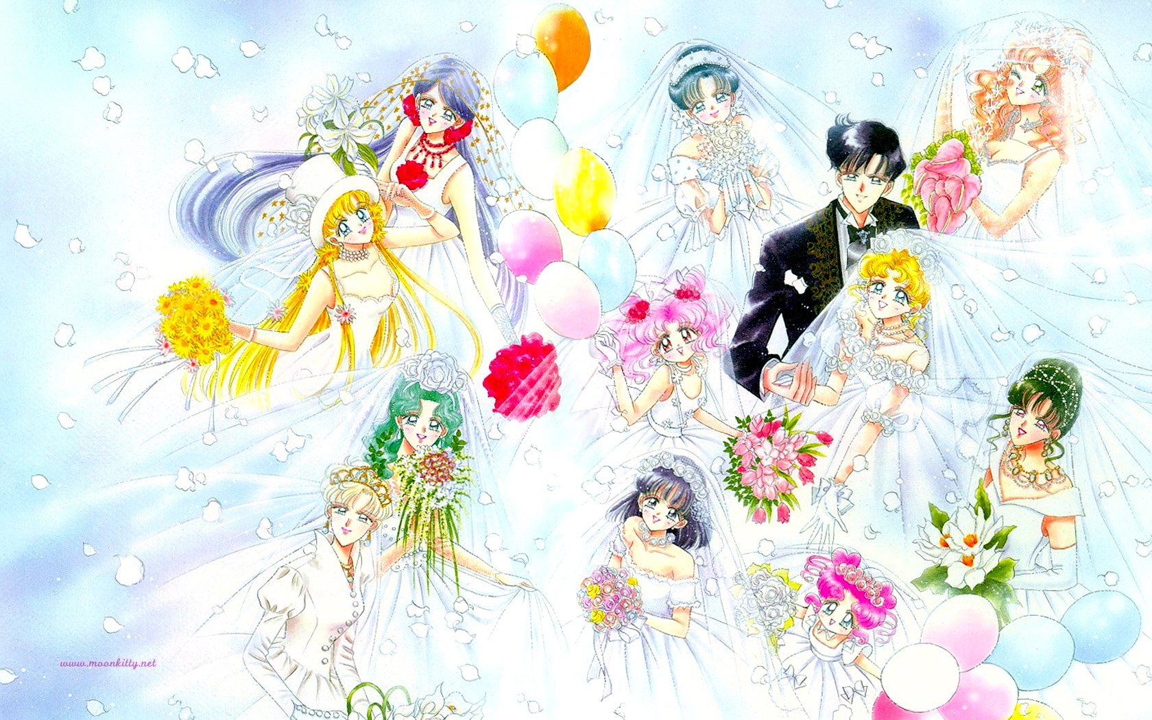Married Sailor Moon
