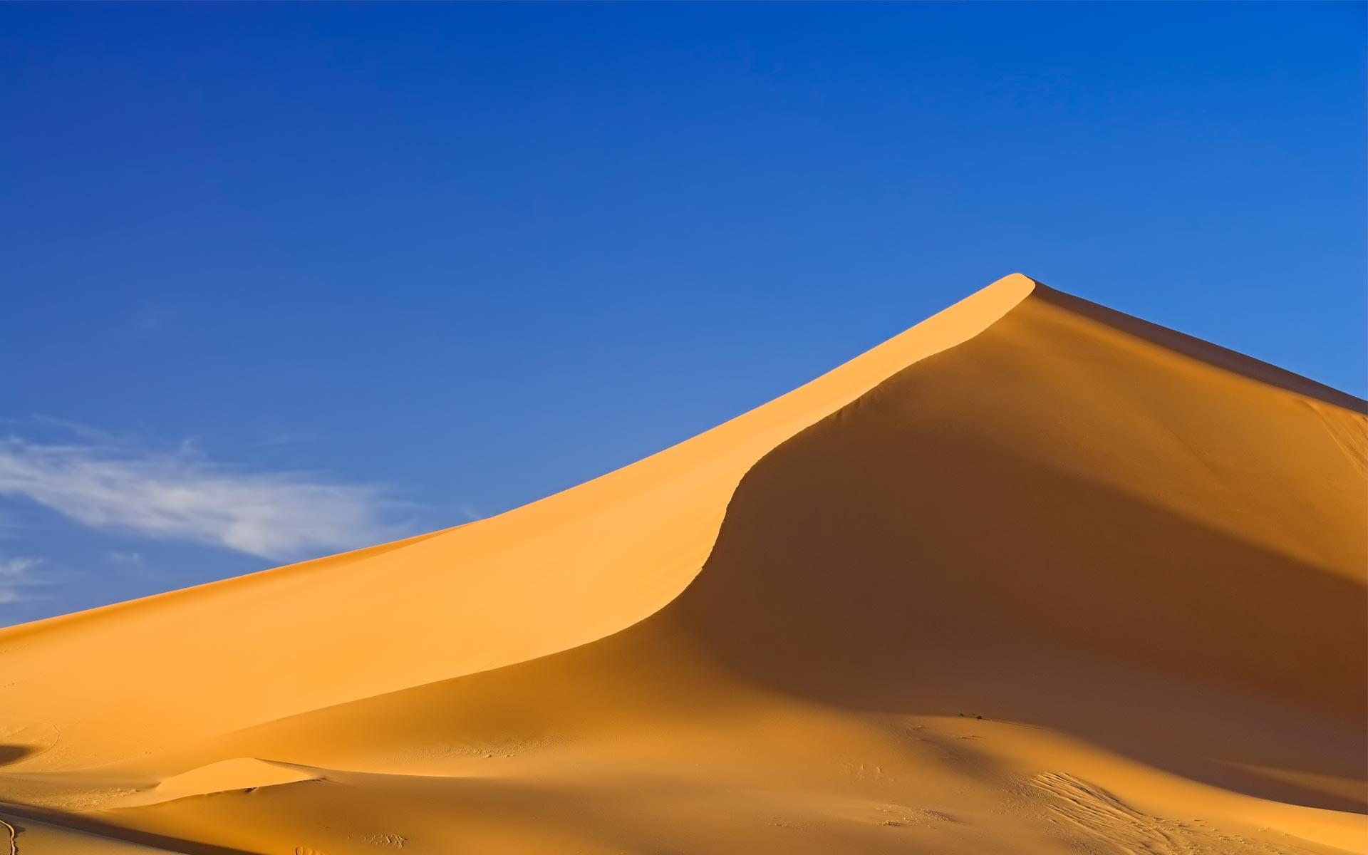 Sand Dunes Background