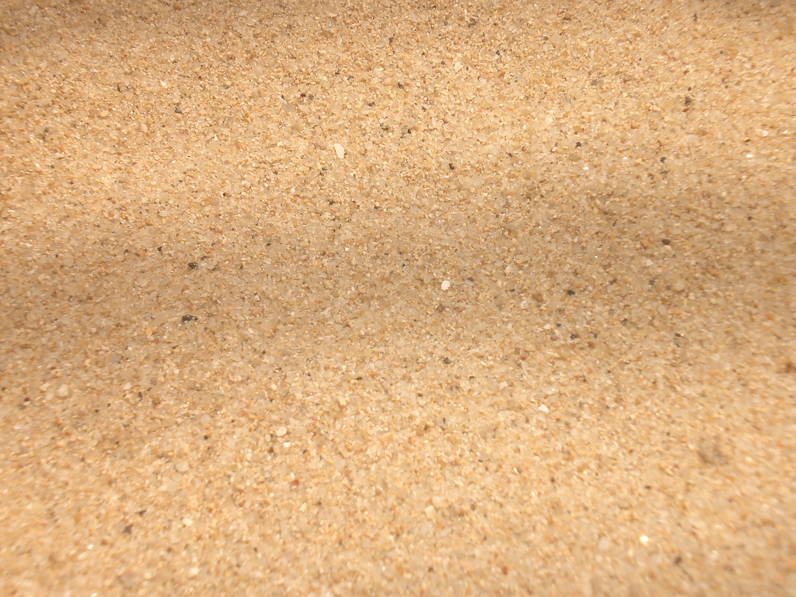 Sand Pictures