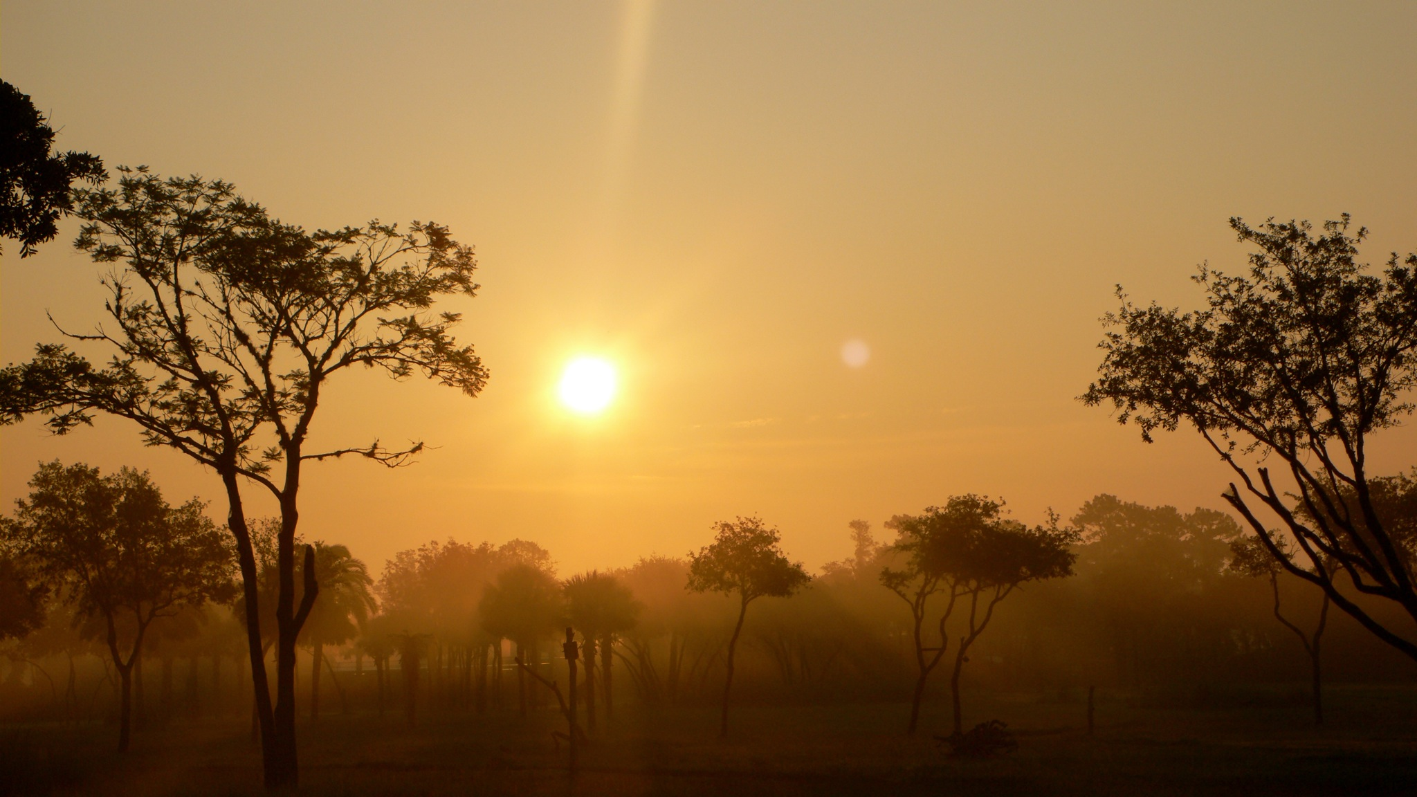 File:Savanna Sunrise by bredgur.jpg