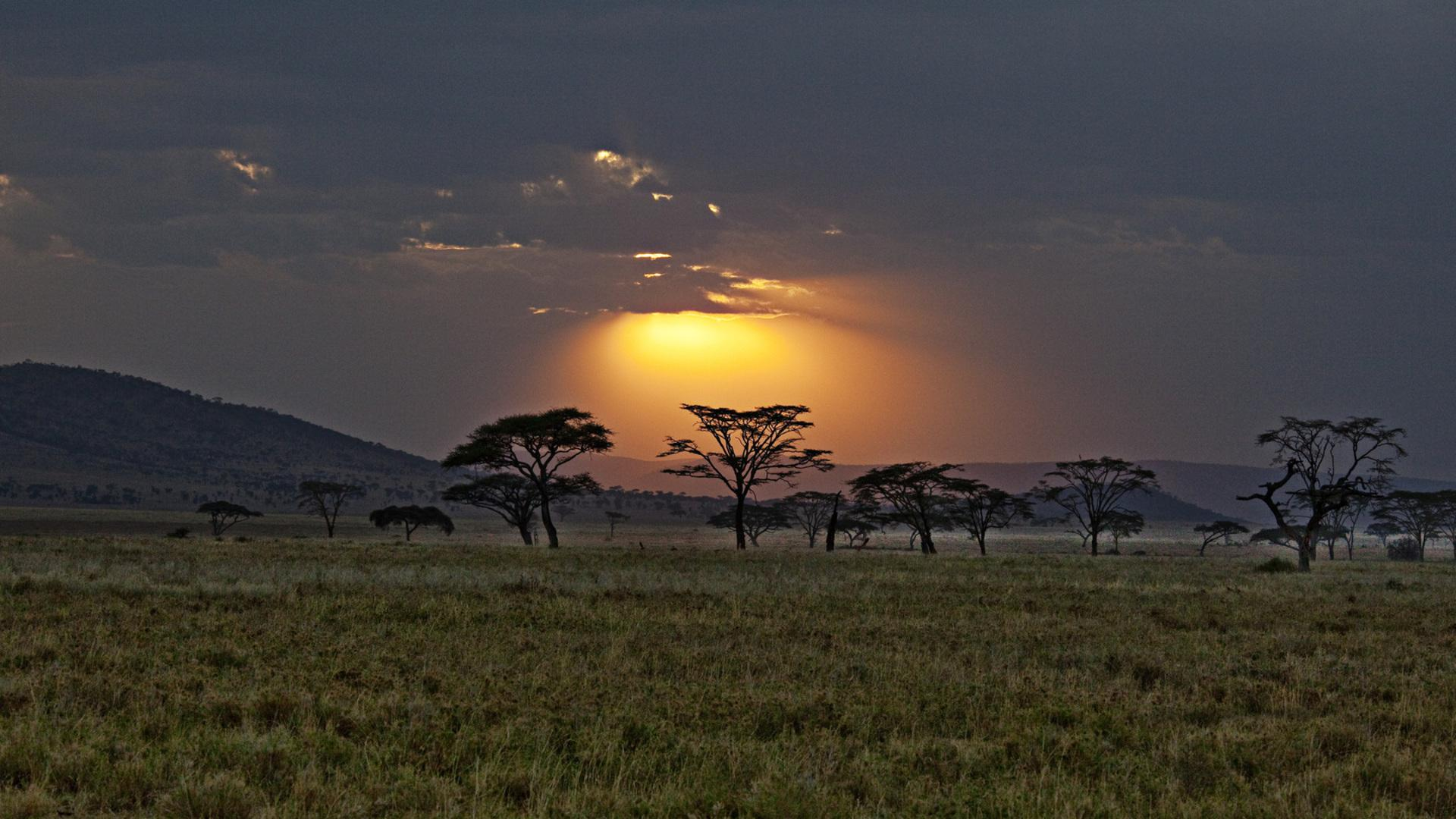 Cloudy sunset over the savannah in kenya HQ WALLPAPER - (#107956)