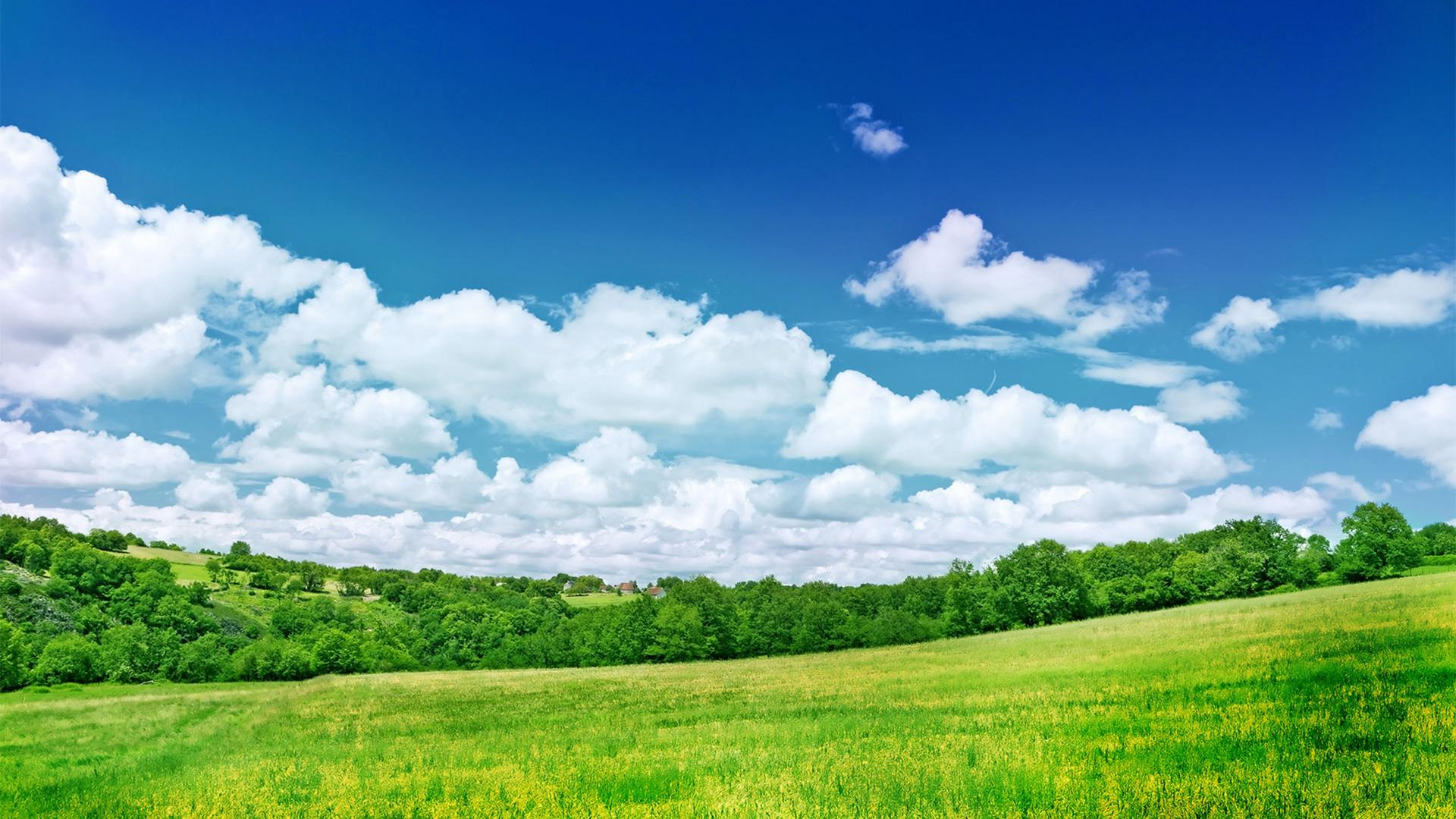 1920x1080 hd fresh summer grassland scenery backgrounds wide wallpapers:1280x800,1440x900,1680x1050 -