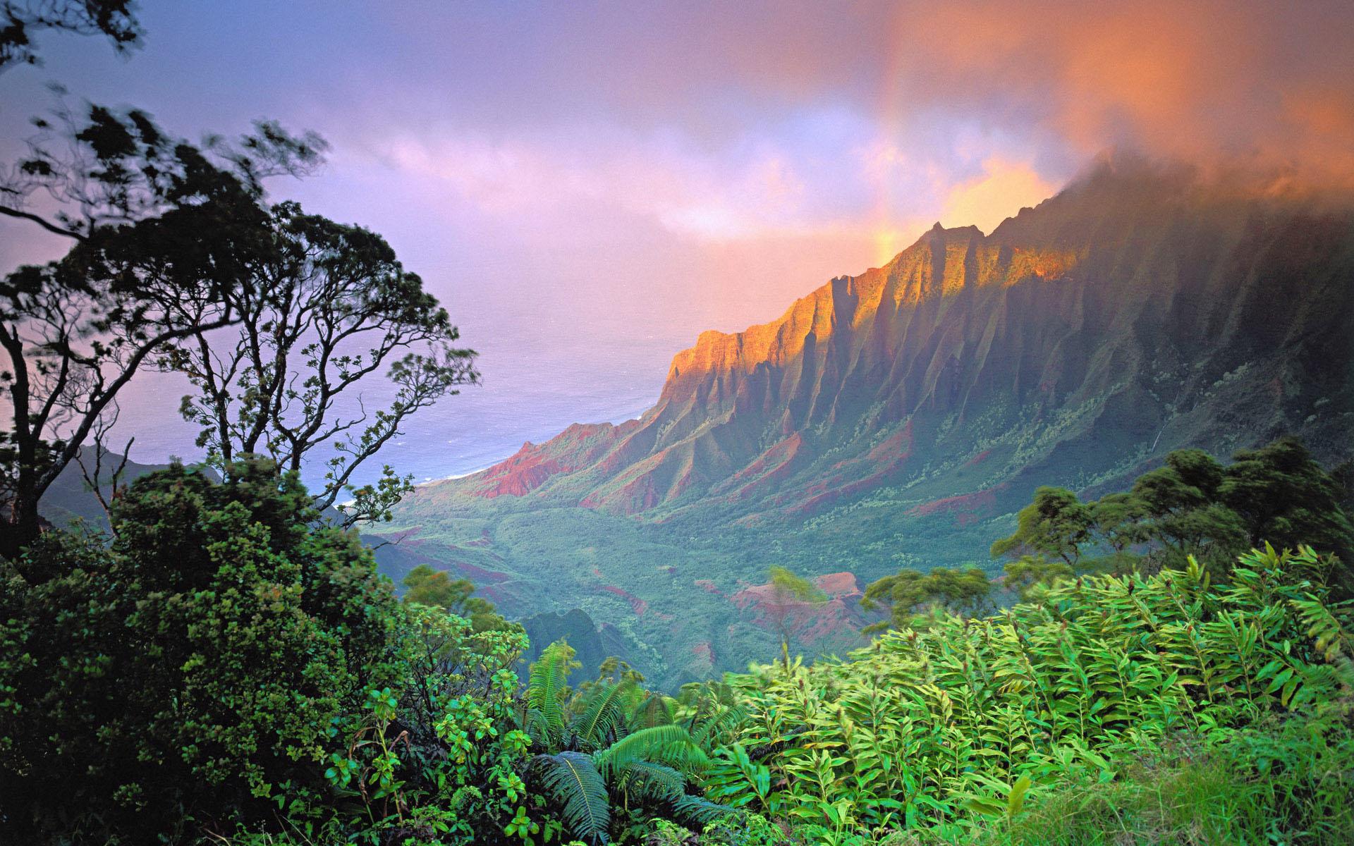 Image: http://www.desktopwallpaperhd.net/wallpapers/2/0/world-scenic-background-valentine-wallpaper-26464.jpg