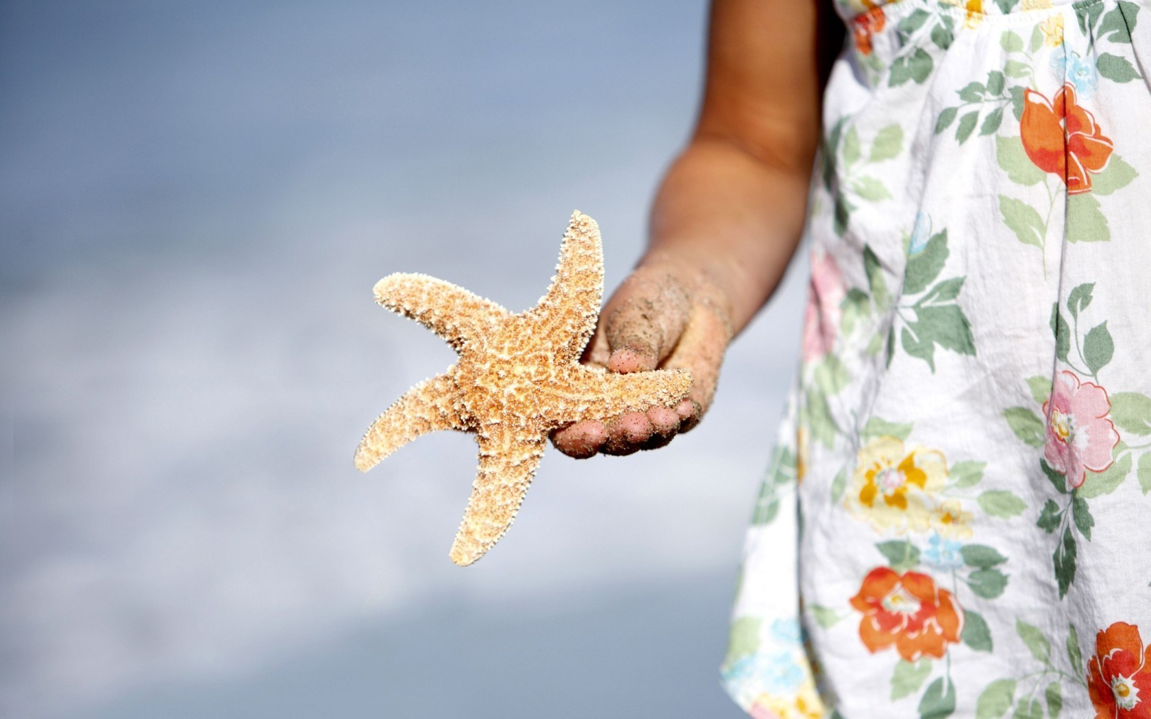 Sea Star Starfish Child Mood Beach