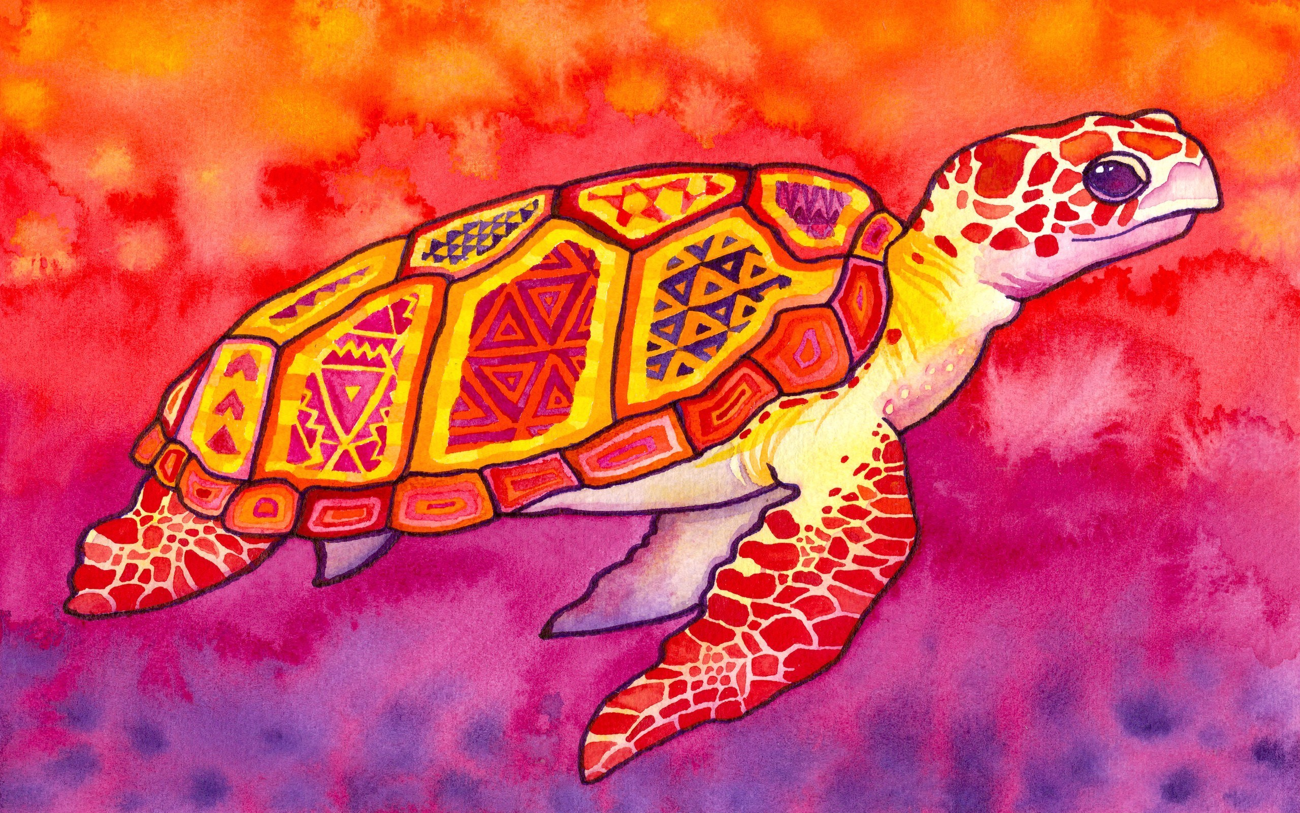Sea Turtle Artwork