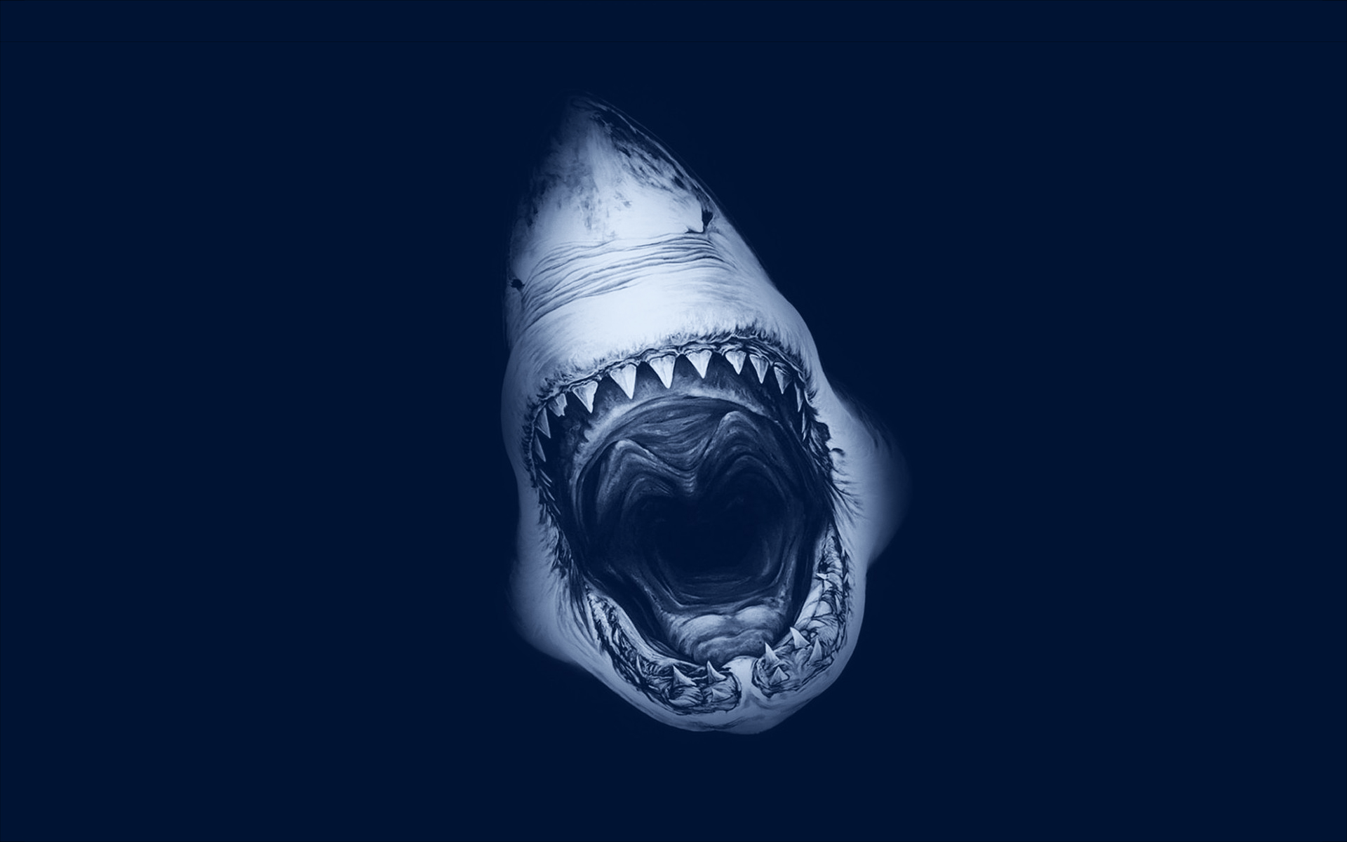 Shark attack art
