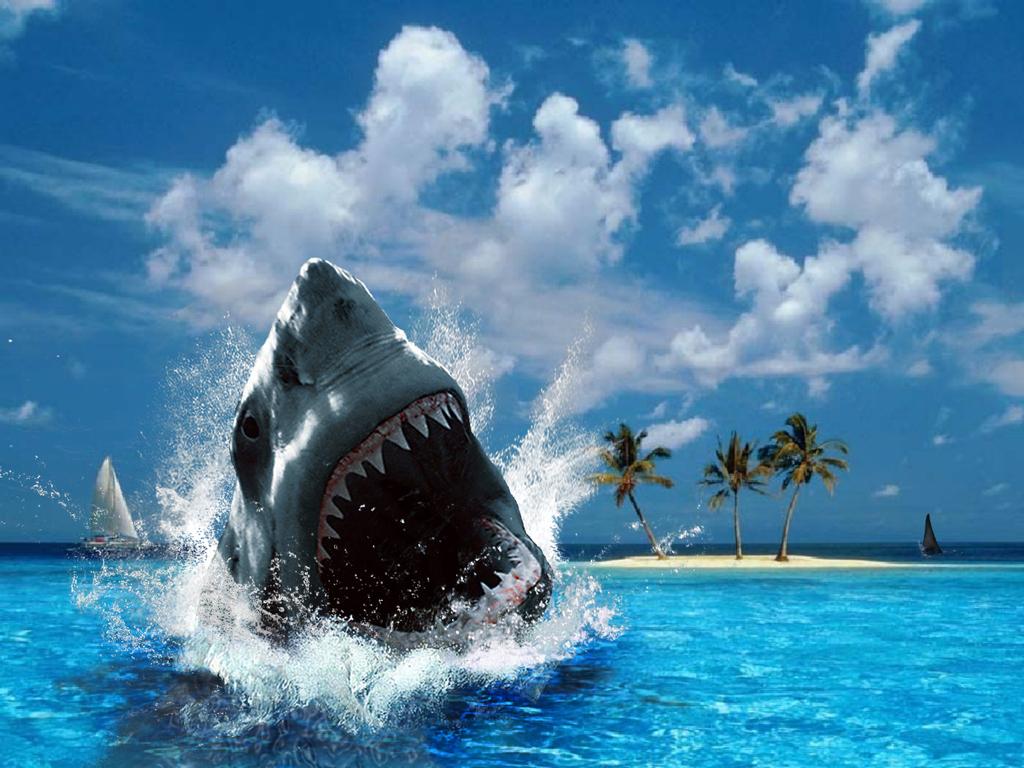 Scary Shark Wallpaper - HD Wallpapers