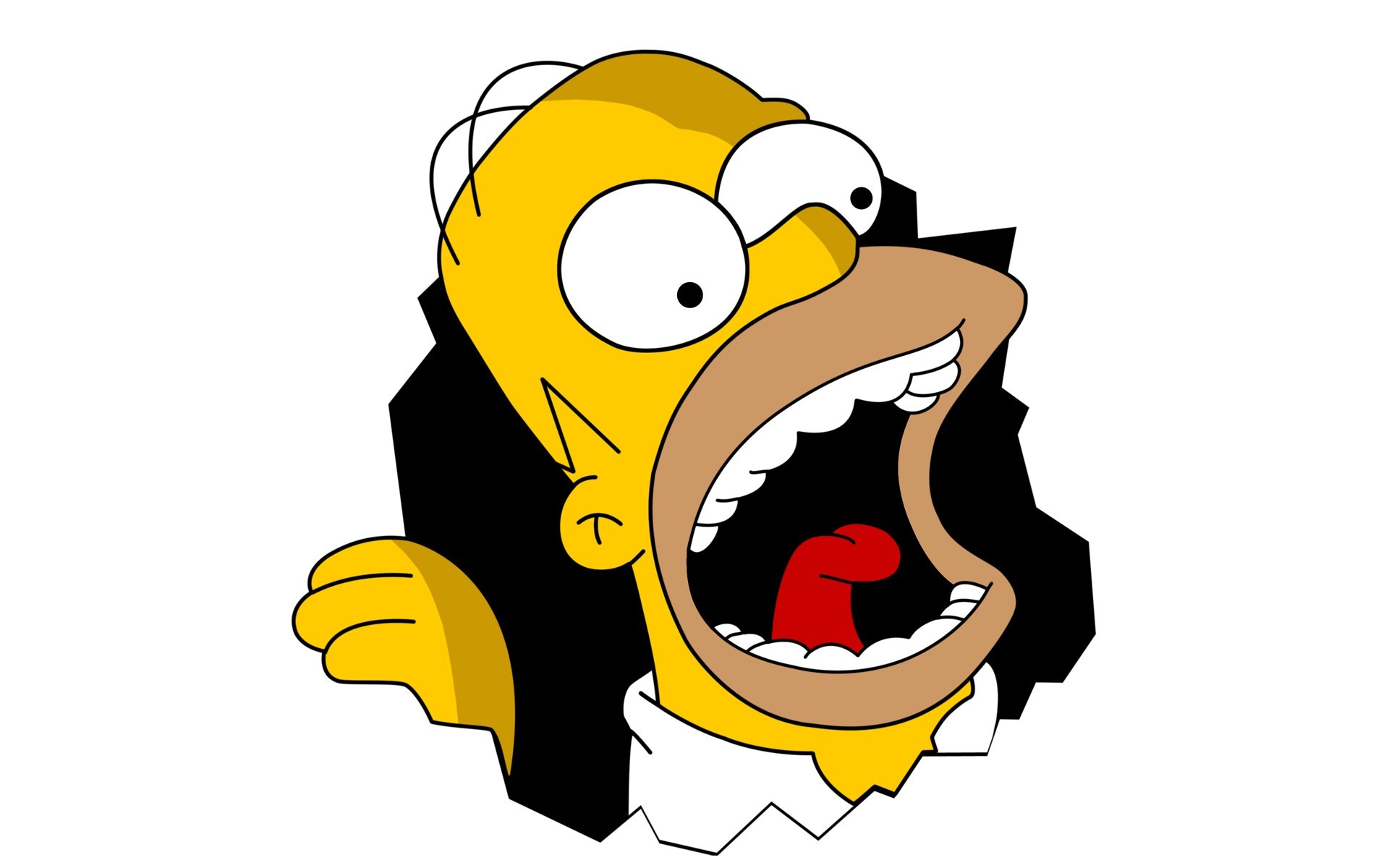 Homer Simpson The Simpsons Wallpaper 1920x1200px