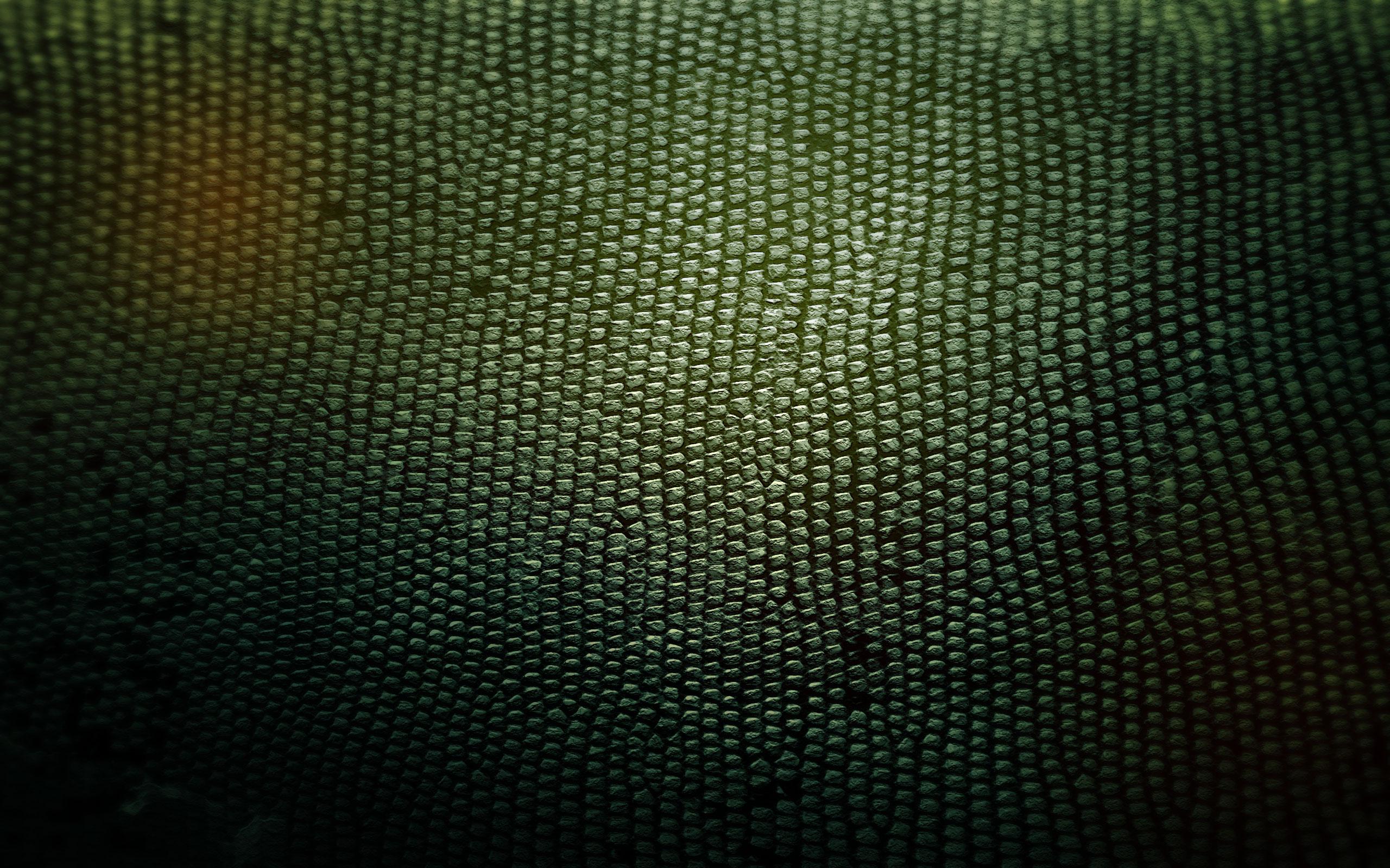 snakes texture skin
