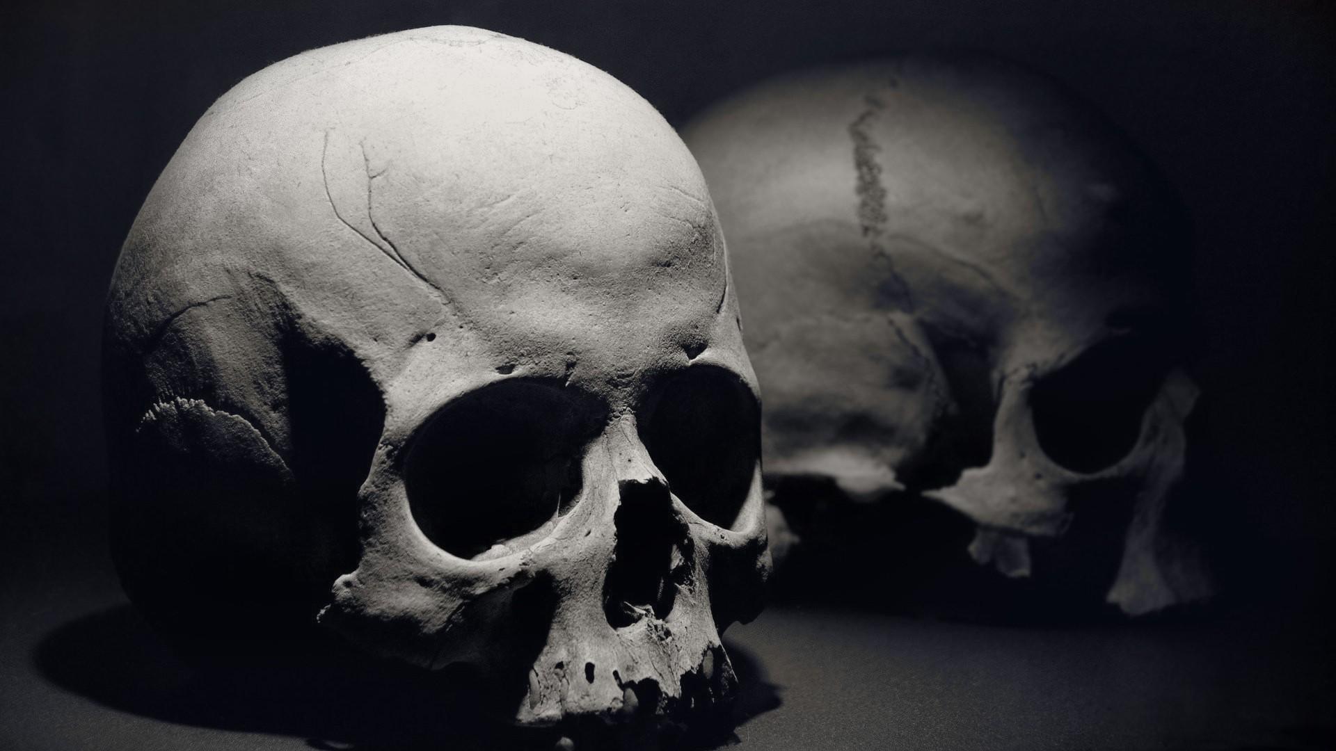 Skull Wallpaper; Skull Wallpaper; Skull Wallpaper ...