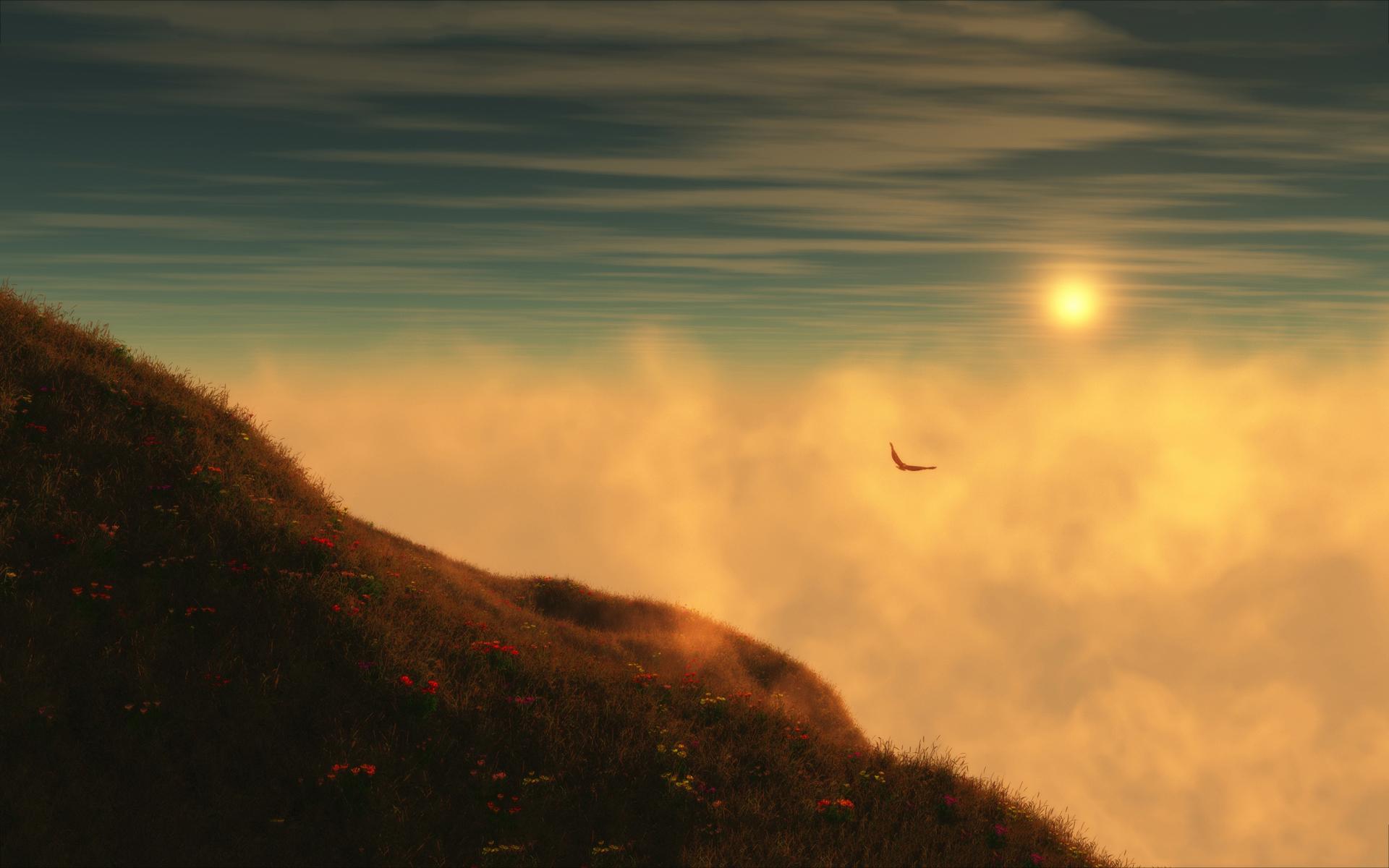 Sky hill flying eagle