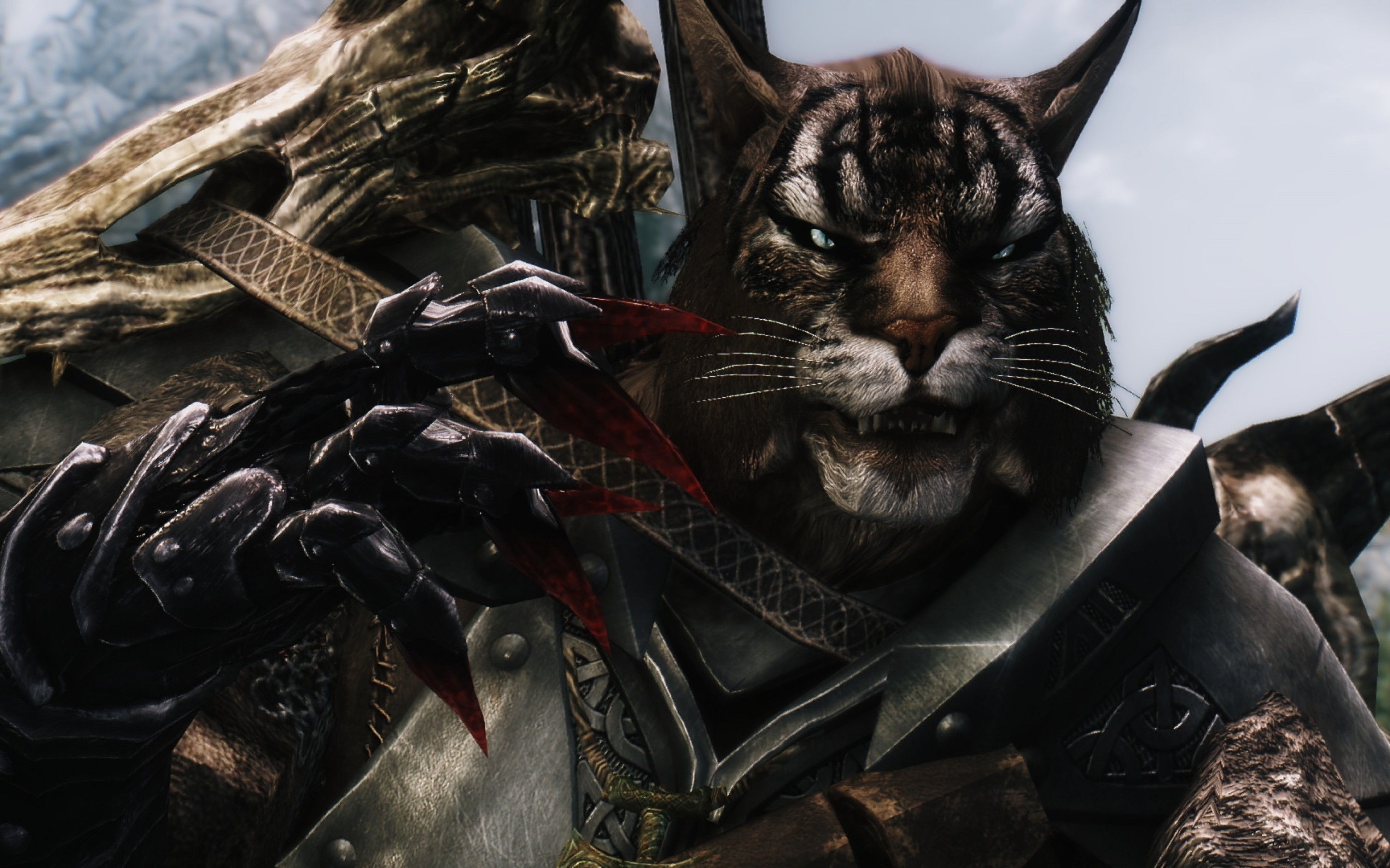 It's 2015, and somehow we're still interested in Skyrim, a game that came out in 2011. That's in part to the vast, open-world that Bethesda created, ...