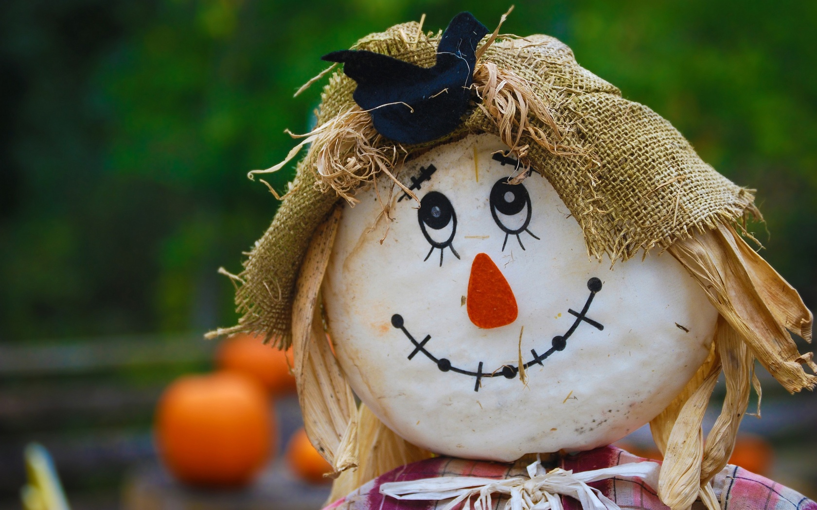 Description: The Wallpaper above is Smiling Scarecrow Wallpaper in Resolution 1680x1050. Choose your Resolution and Download Smiling Scarecrow Wallpaper