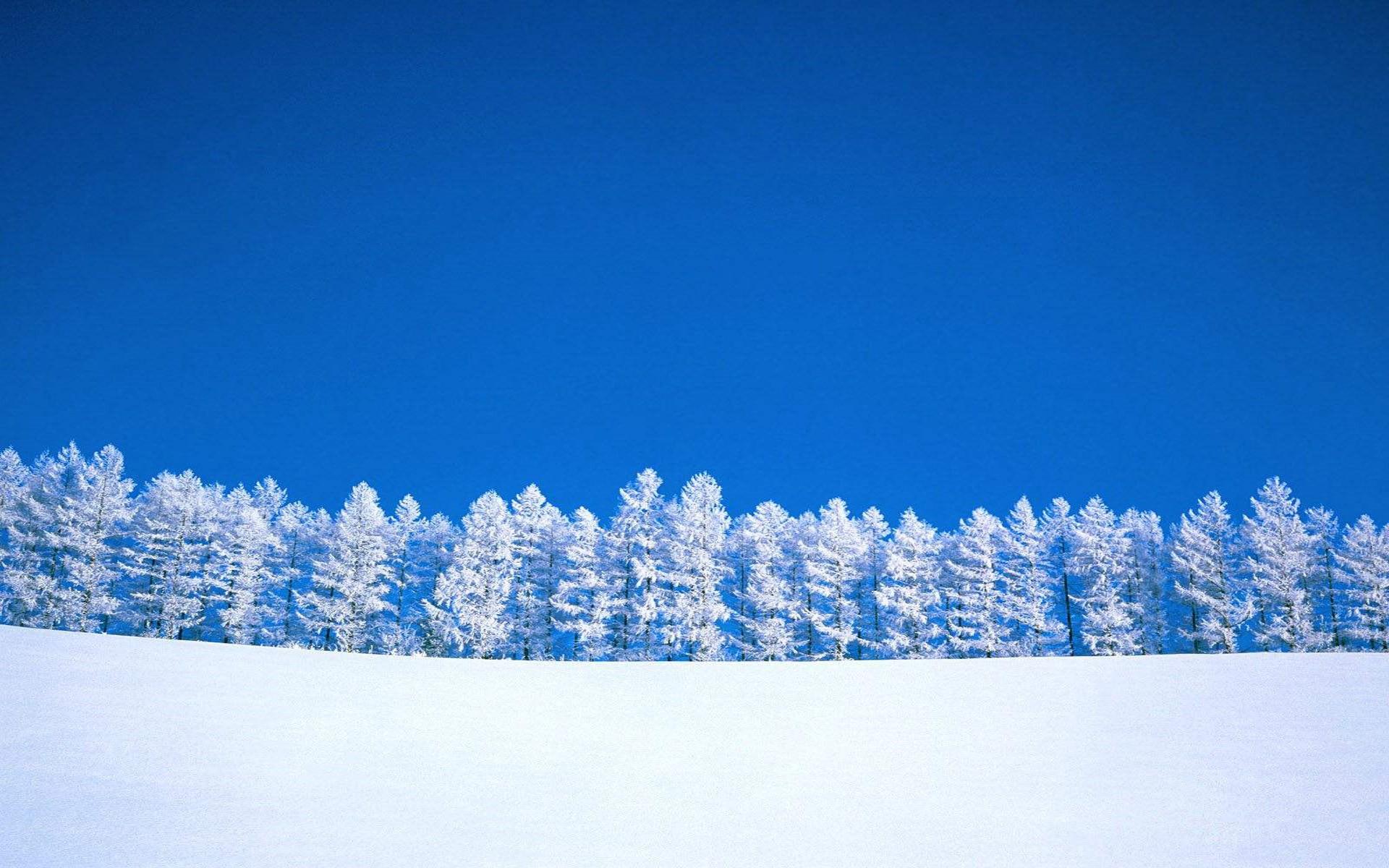 Snow-row