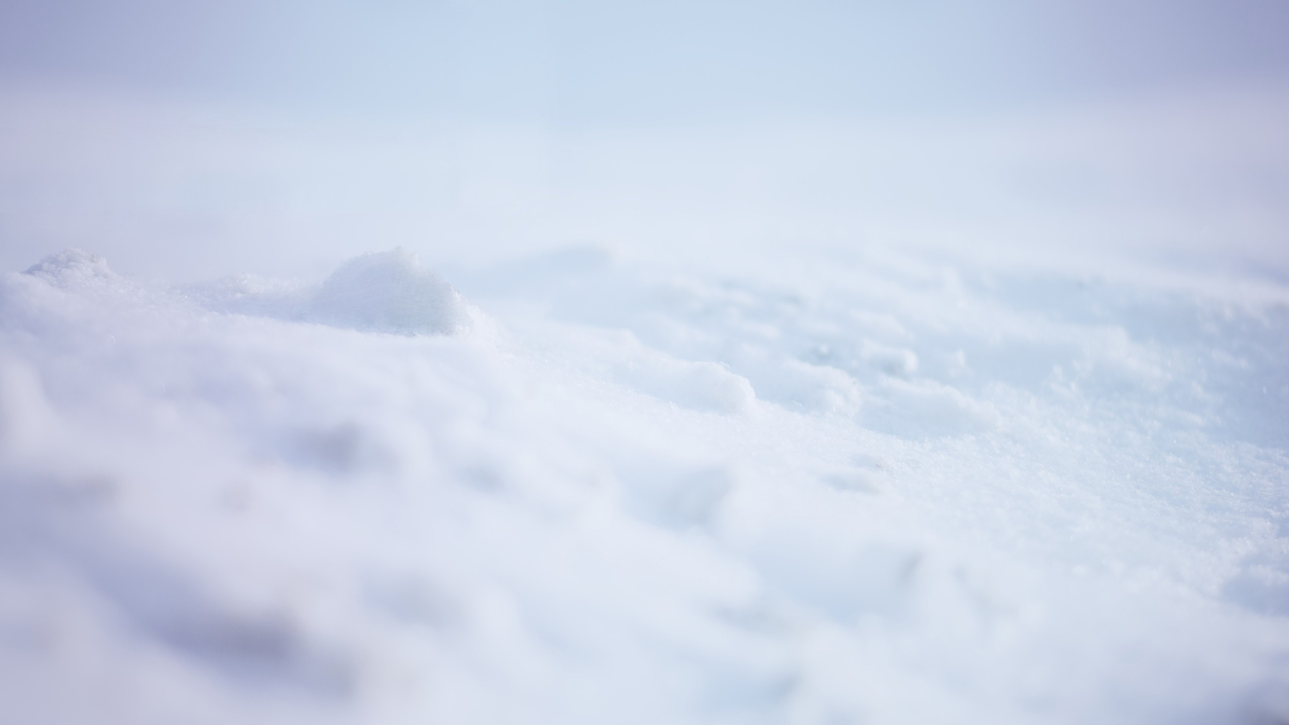 2560x1440 Wallpaper snow, white, background, surface