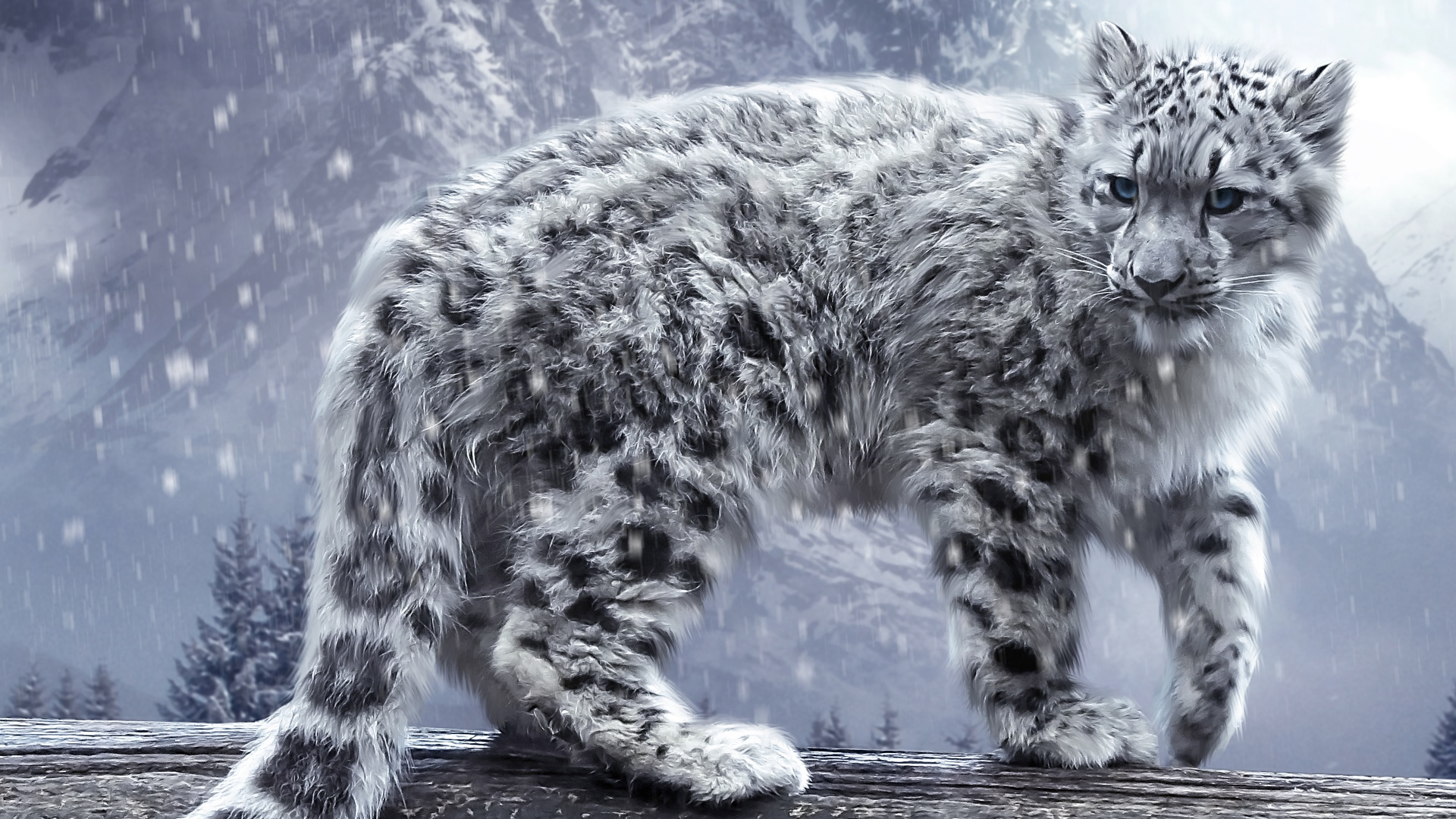 Snow leopard artwork