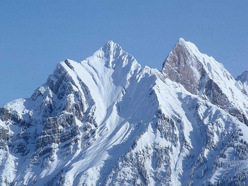 Desktop backgrounds · Animal Life · Nature Snow Mountain