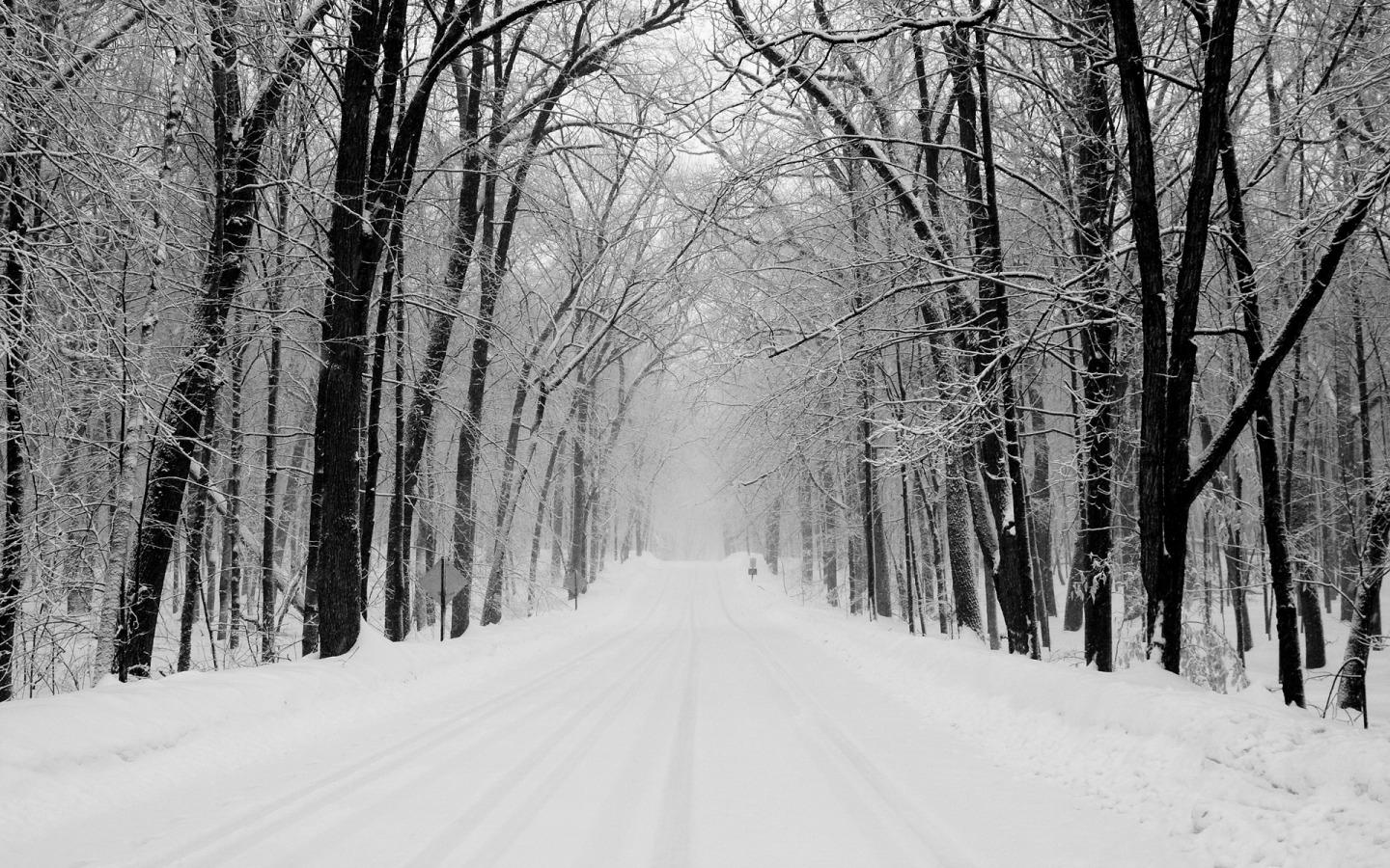 Download Wallpaper snow trees roads -1952-6