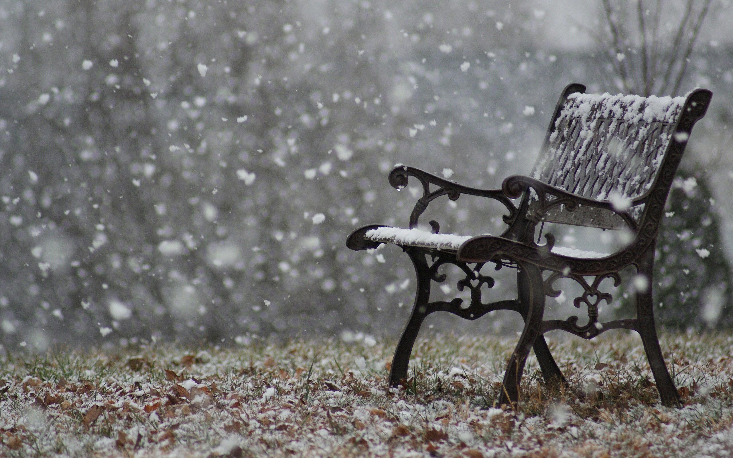 Snowfall Park Bench