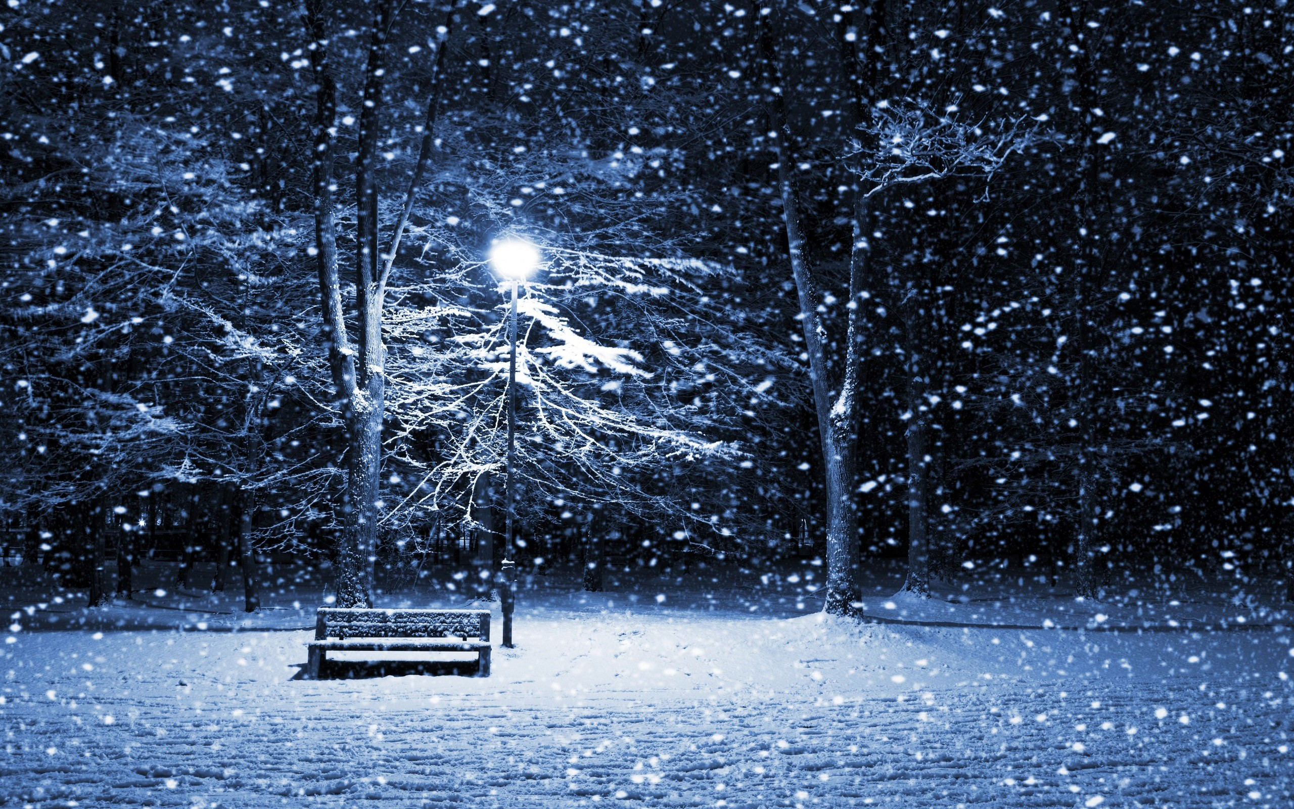 Images for Gt Snowfall At Night Wallpaper 2560x1600px