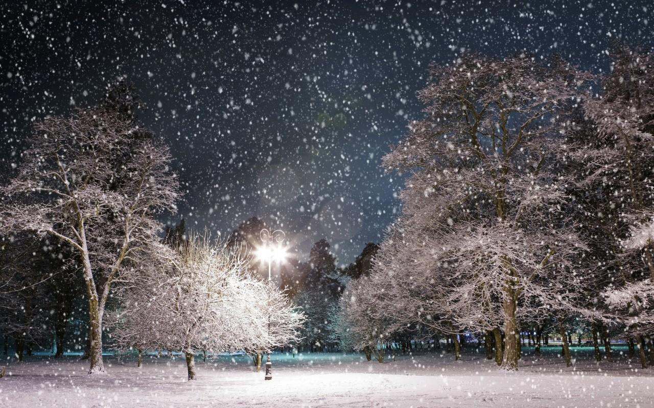 Download Snowfall at Night Wallpaper :