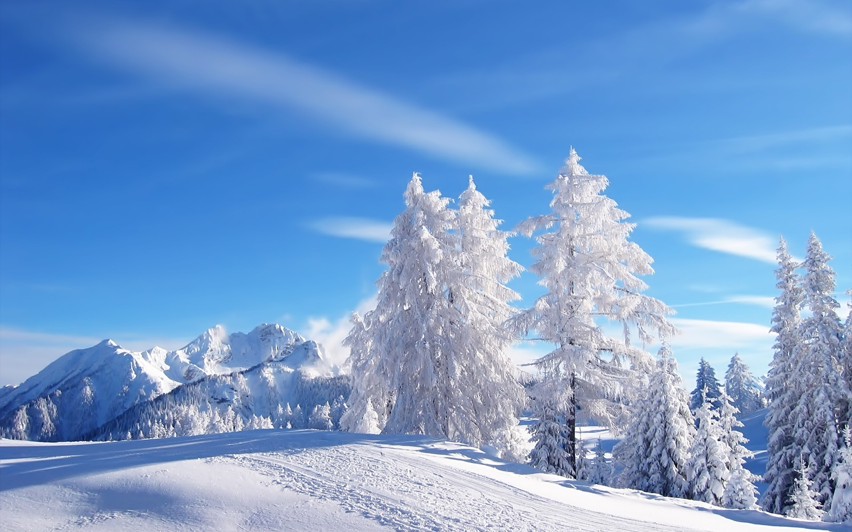 Beautiful Snowfall Wallpaper