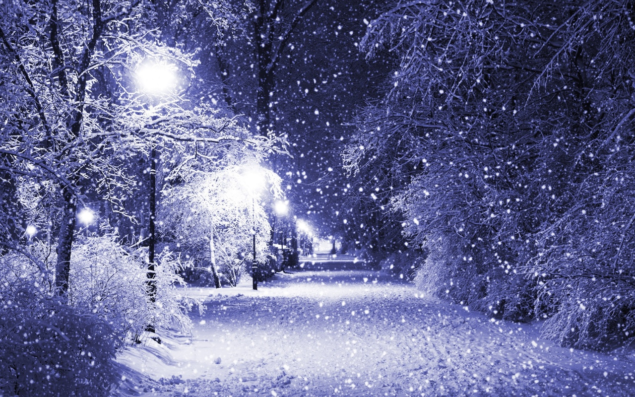 Snow Falling 15829