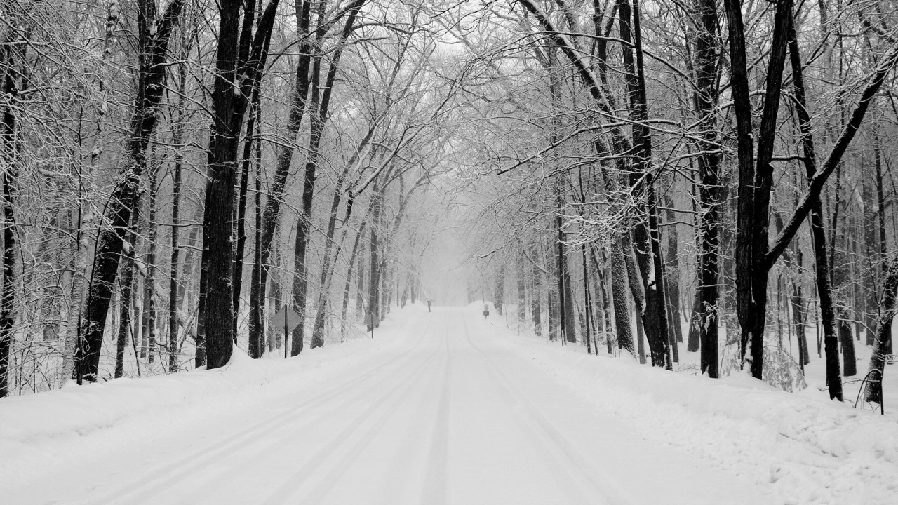 Snowy Road Wallpaper 15310