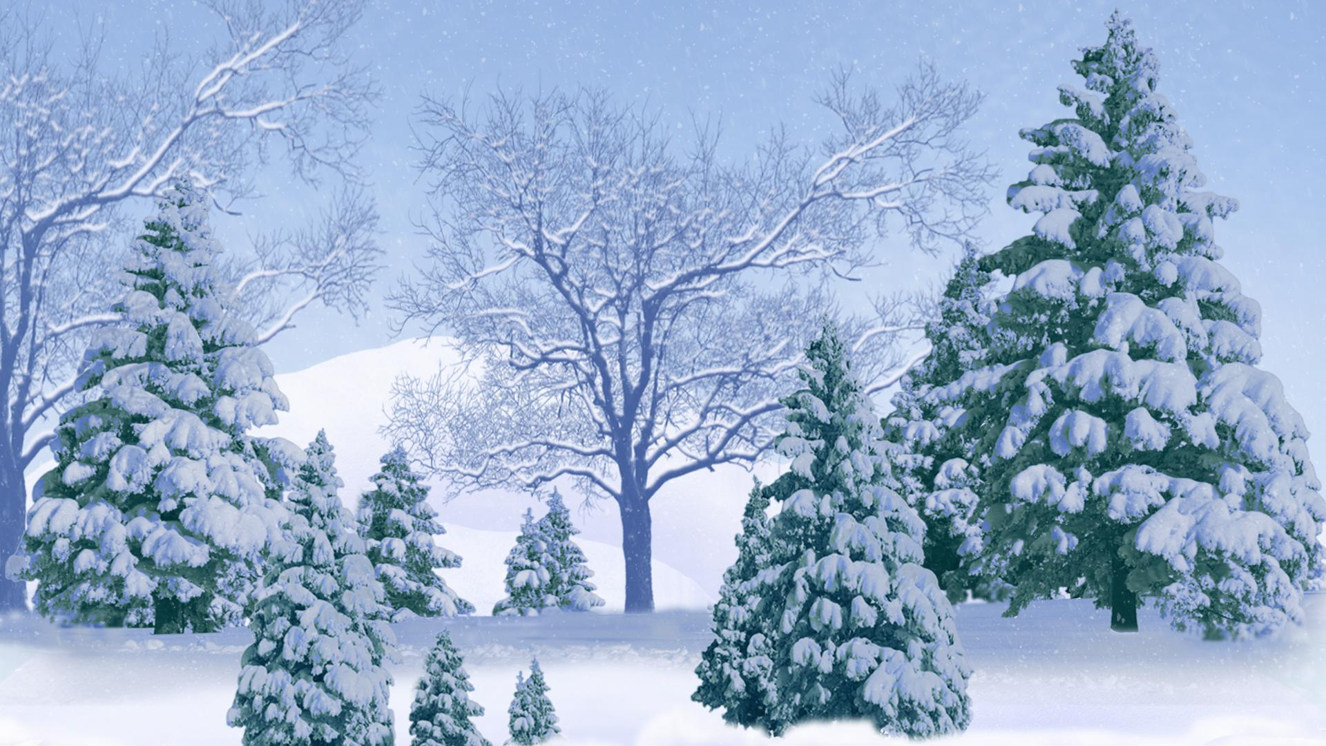 Snowy Trees Background