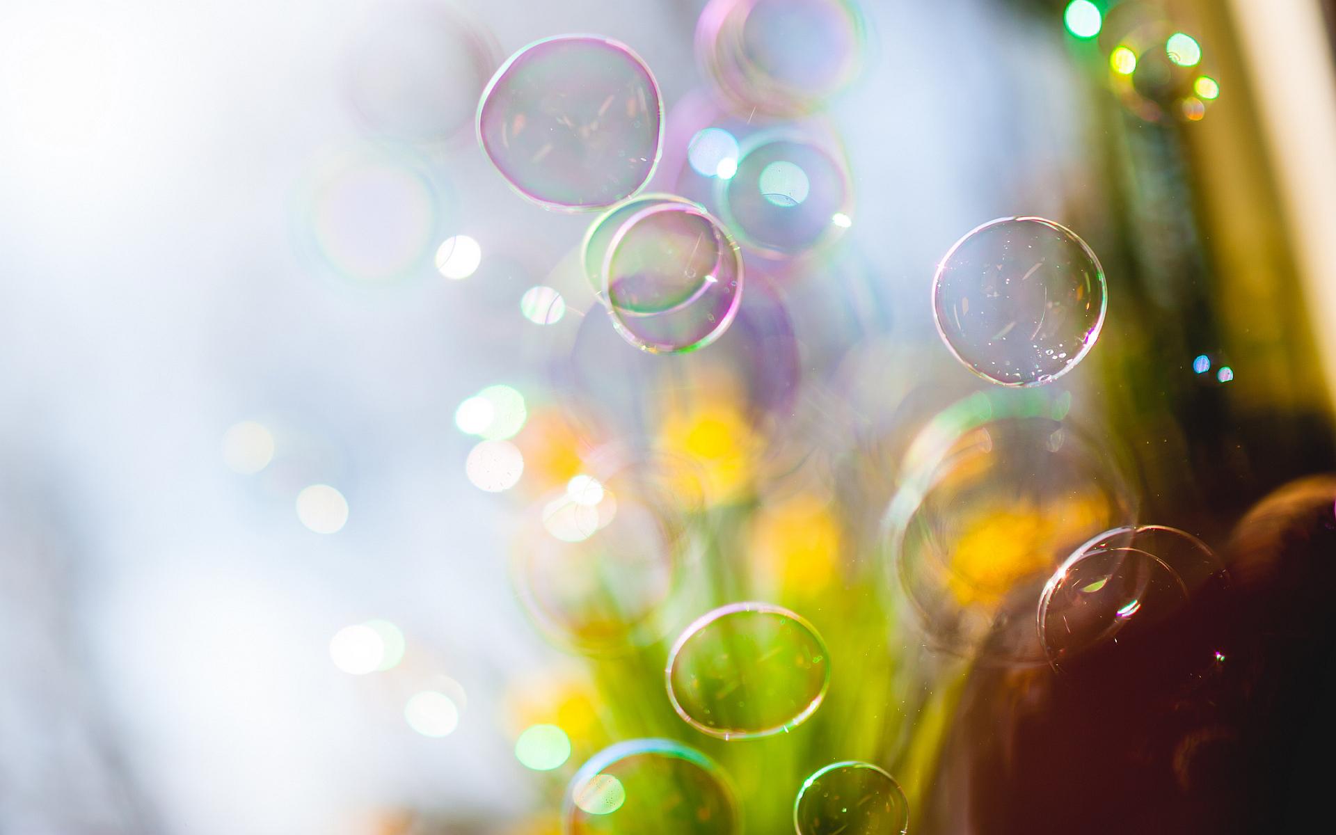Soap bubbles sunshine