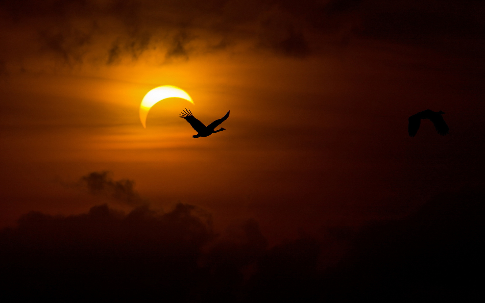 Eclipse in photos