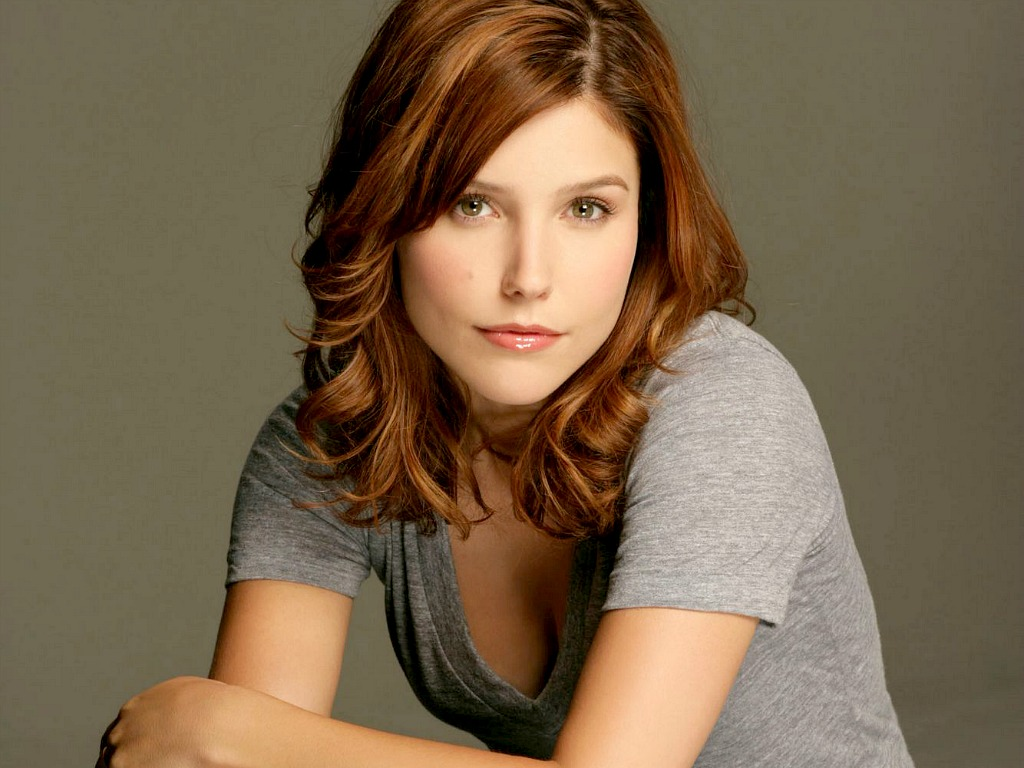 Sophia Bush Free Wallpaper Images