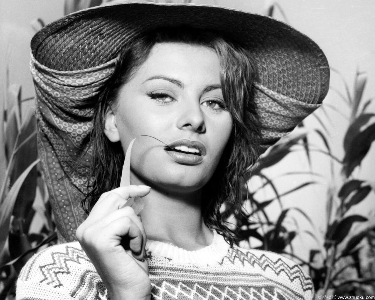 Sophia Loren For Desktop 14 Thumb