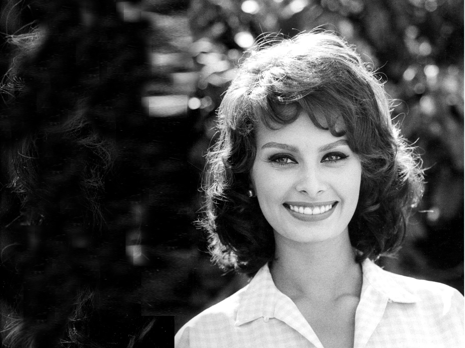 Sophia Loren HD Wallpapers