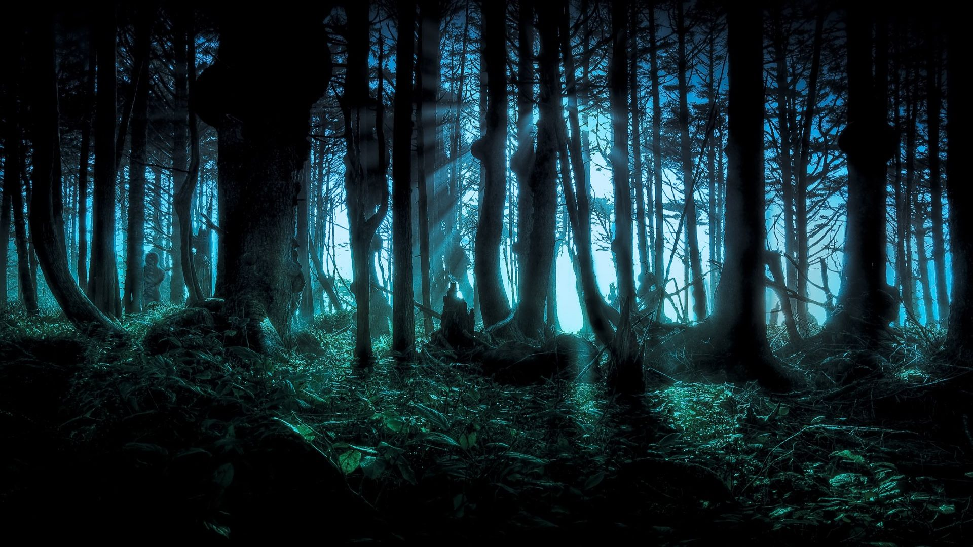 Spooky Forest Wallpaper