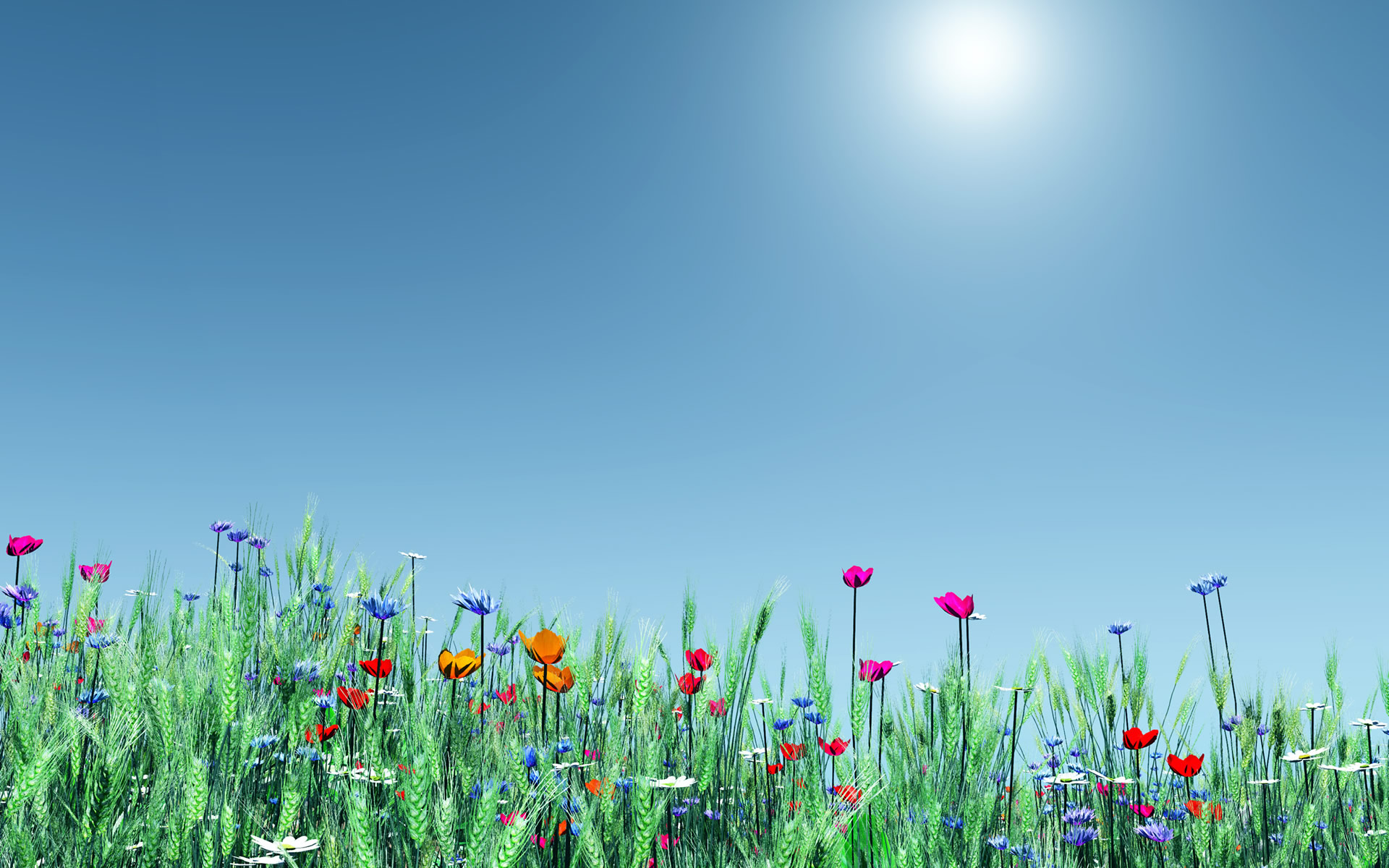 Spring Flowers Wallpaper (15)