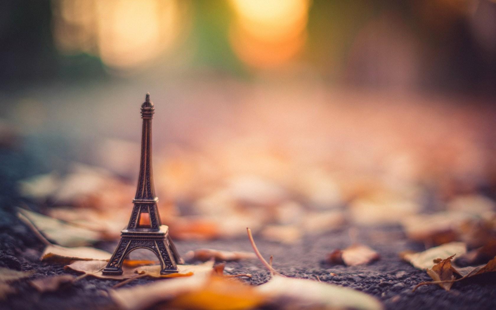 Statue La Tour Eiffel Leaves Dry Autumn