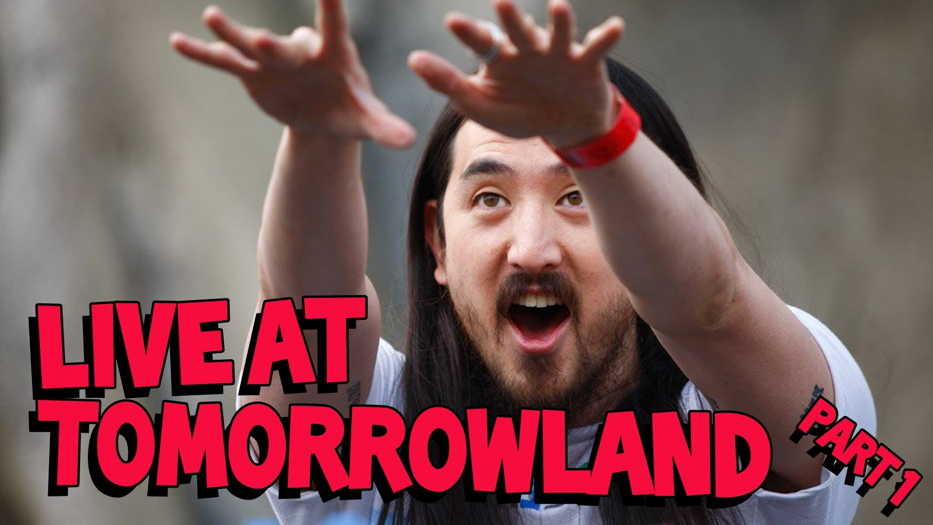 Steve Aoki LIVE at Tomorrowland 2012