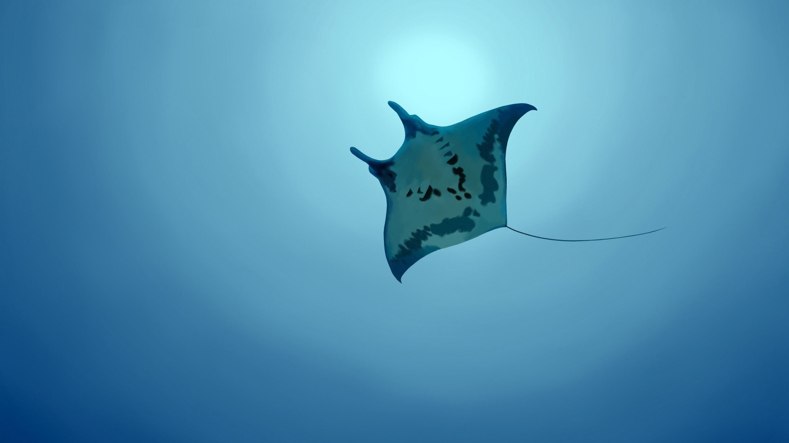 Free Stingray Wallpaper