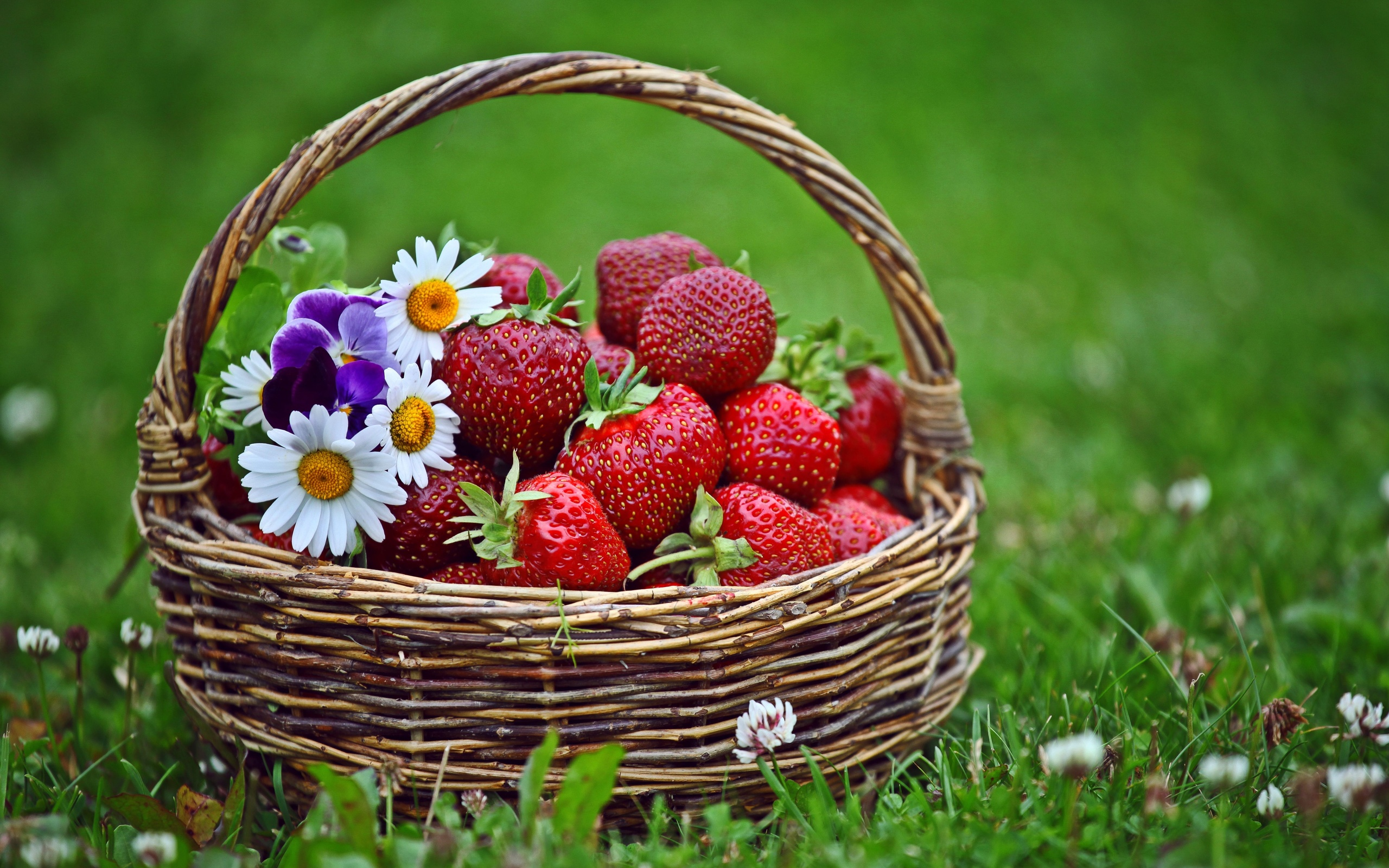Basket Strawberries Wallpapers Pictures Photos Images · «