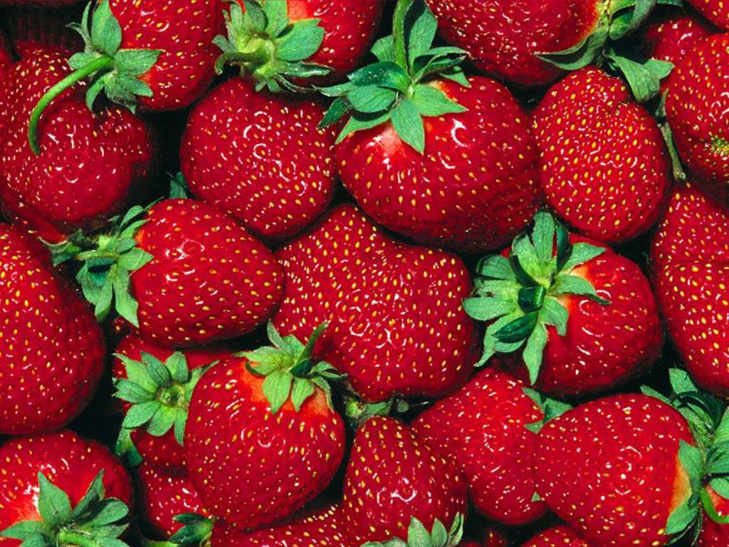 ... Strawberry-Wallpaper-fruit-6102247-1024-7681 ...