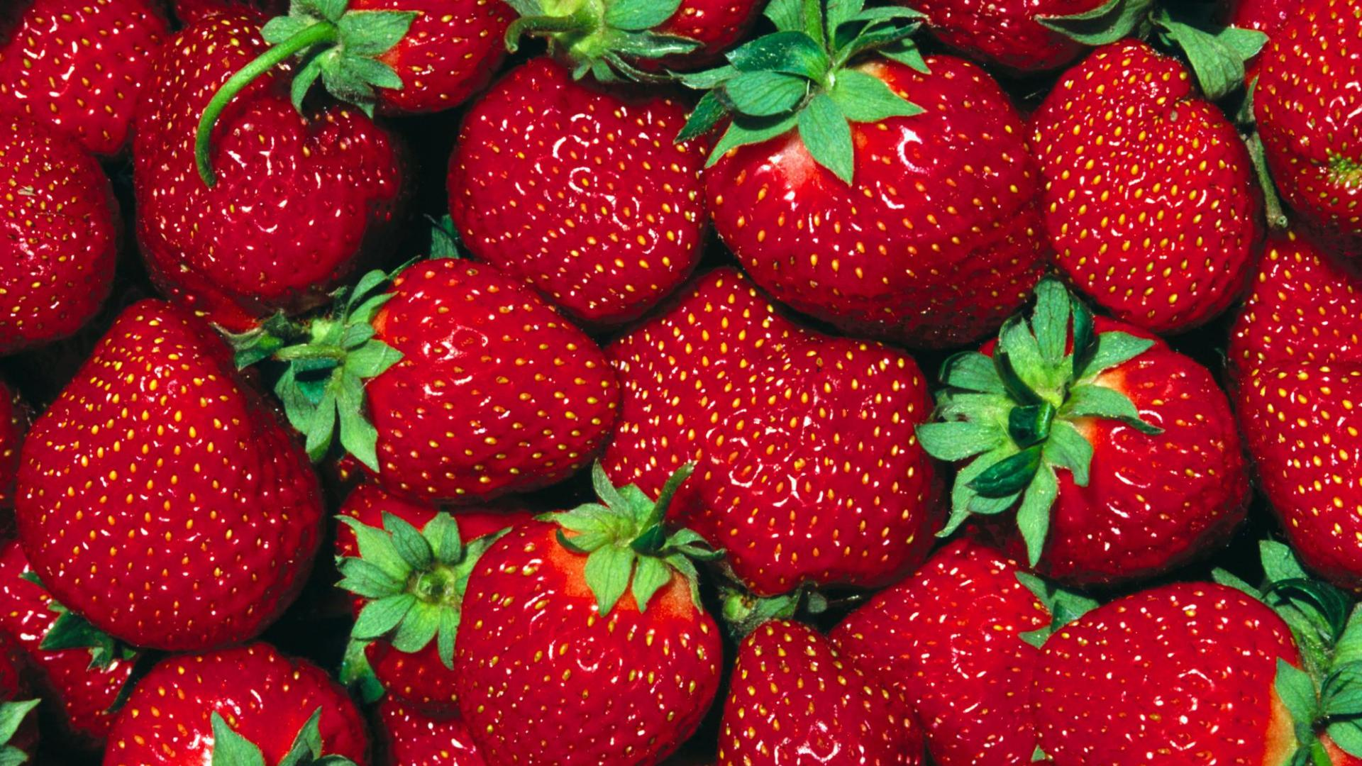 Latest Strawberrie HD Wallpaper Free Download