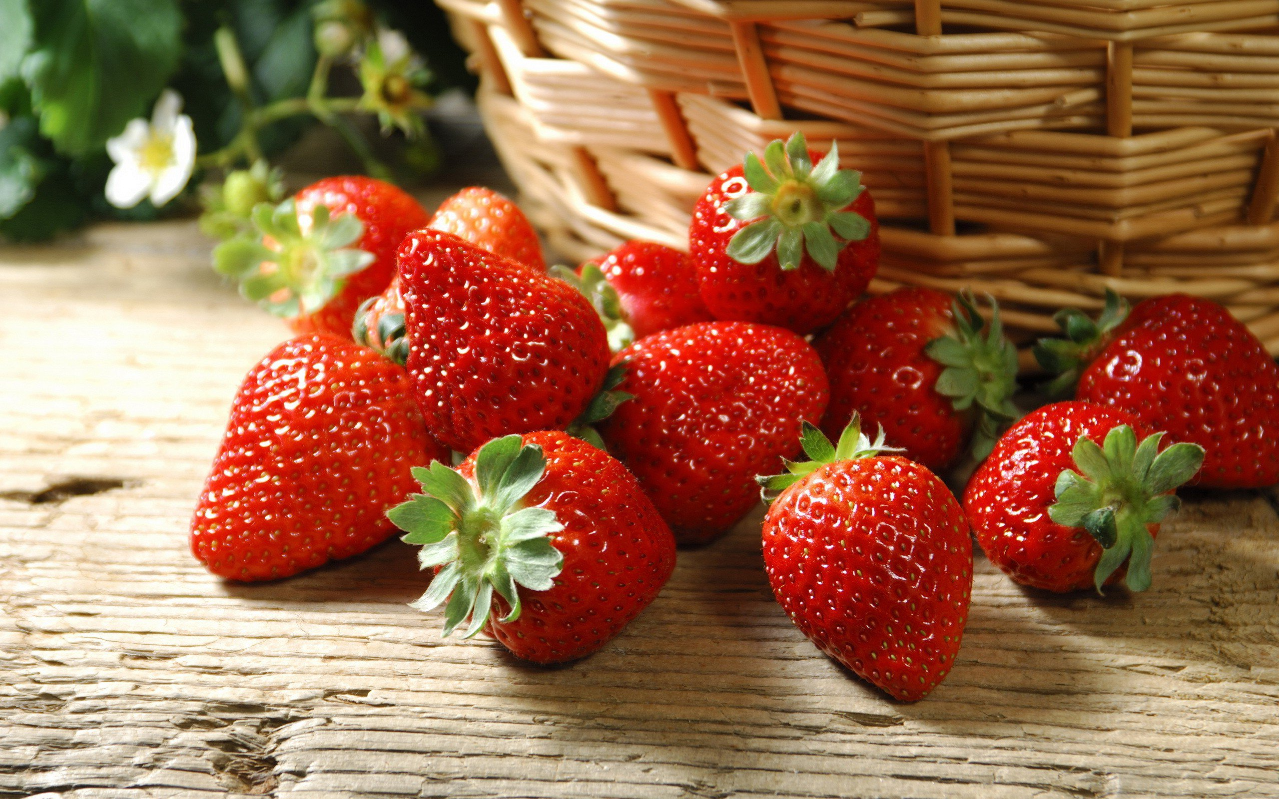 HD Wallpaper | Background ID:422822. 2560x1600 Food Strawberry