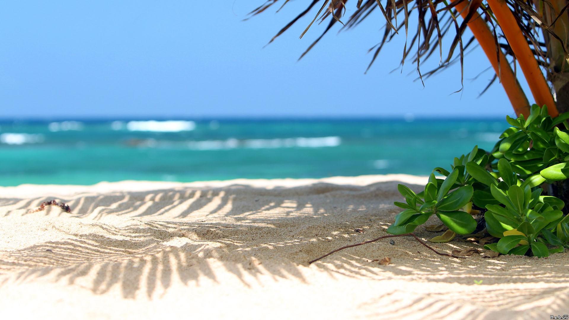 Stunning Beach Scenery