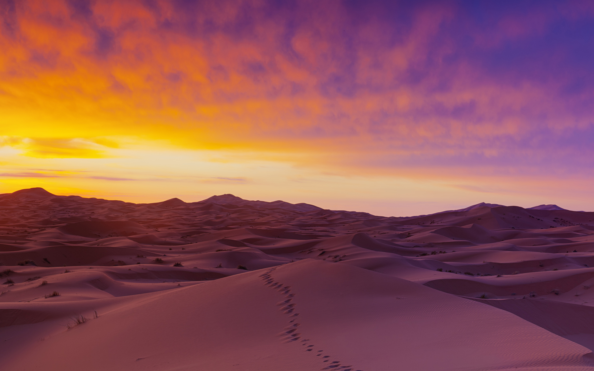 Stunning Sahara Desert Wallpaper