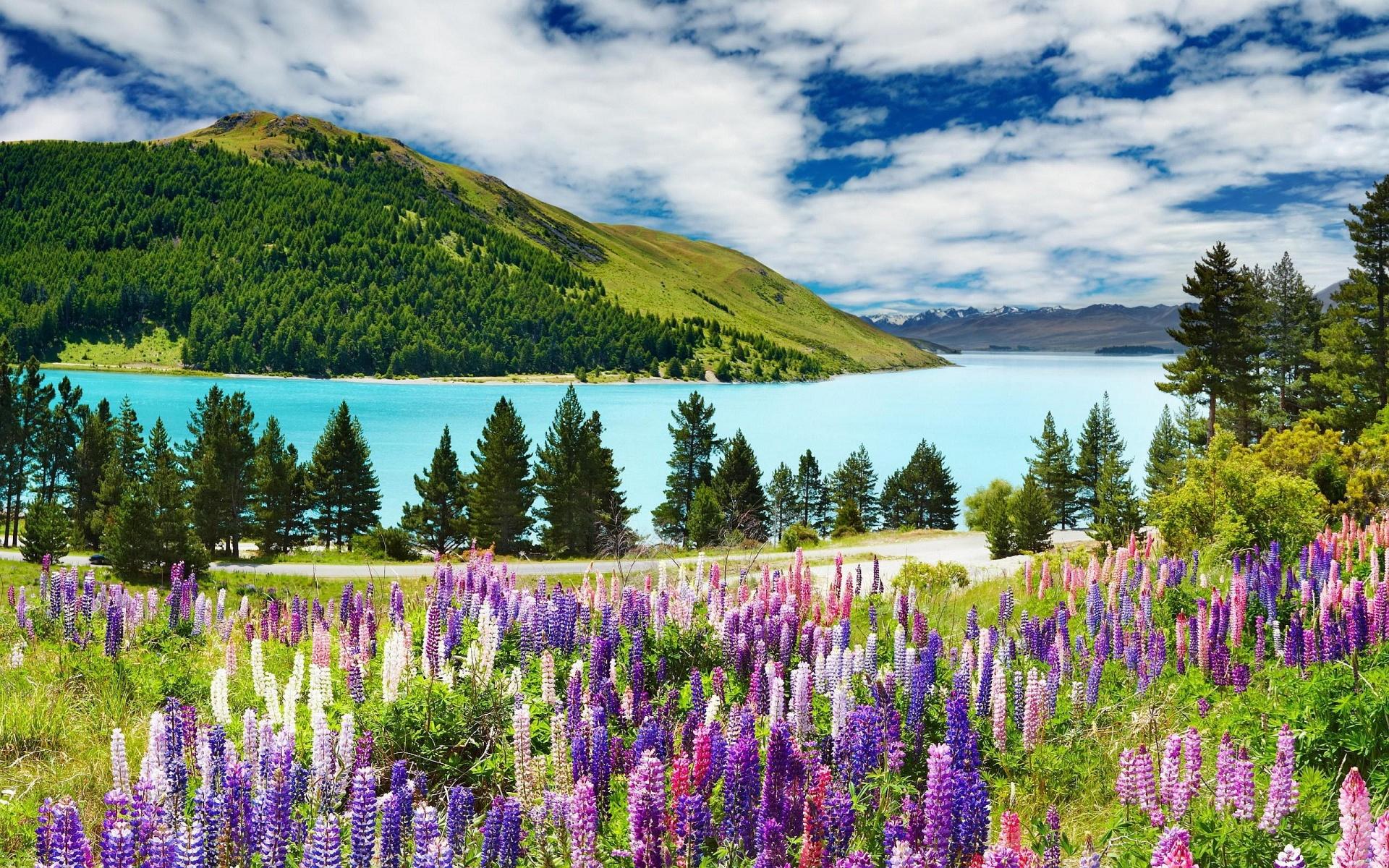 mrwallpaper.com/view/Stunning-Landscape-1920x1200