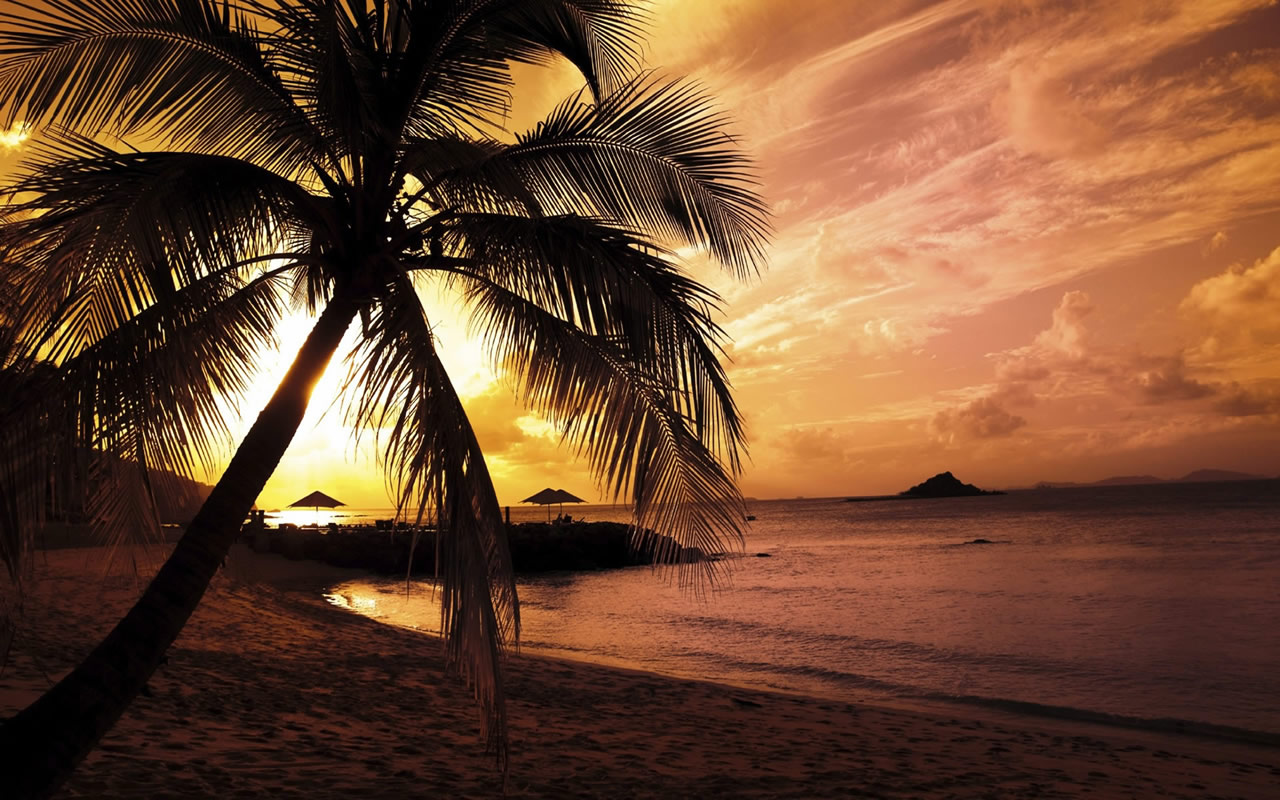 summer screensavers wallpaper | 1280x800 | #60238
