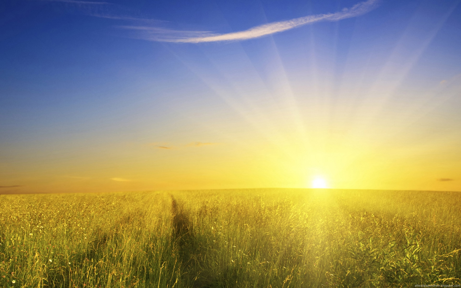 Sun Shine Nature Rises Fantasy Wallpaper