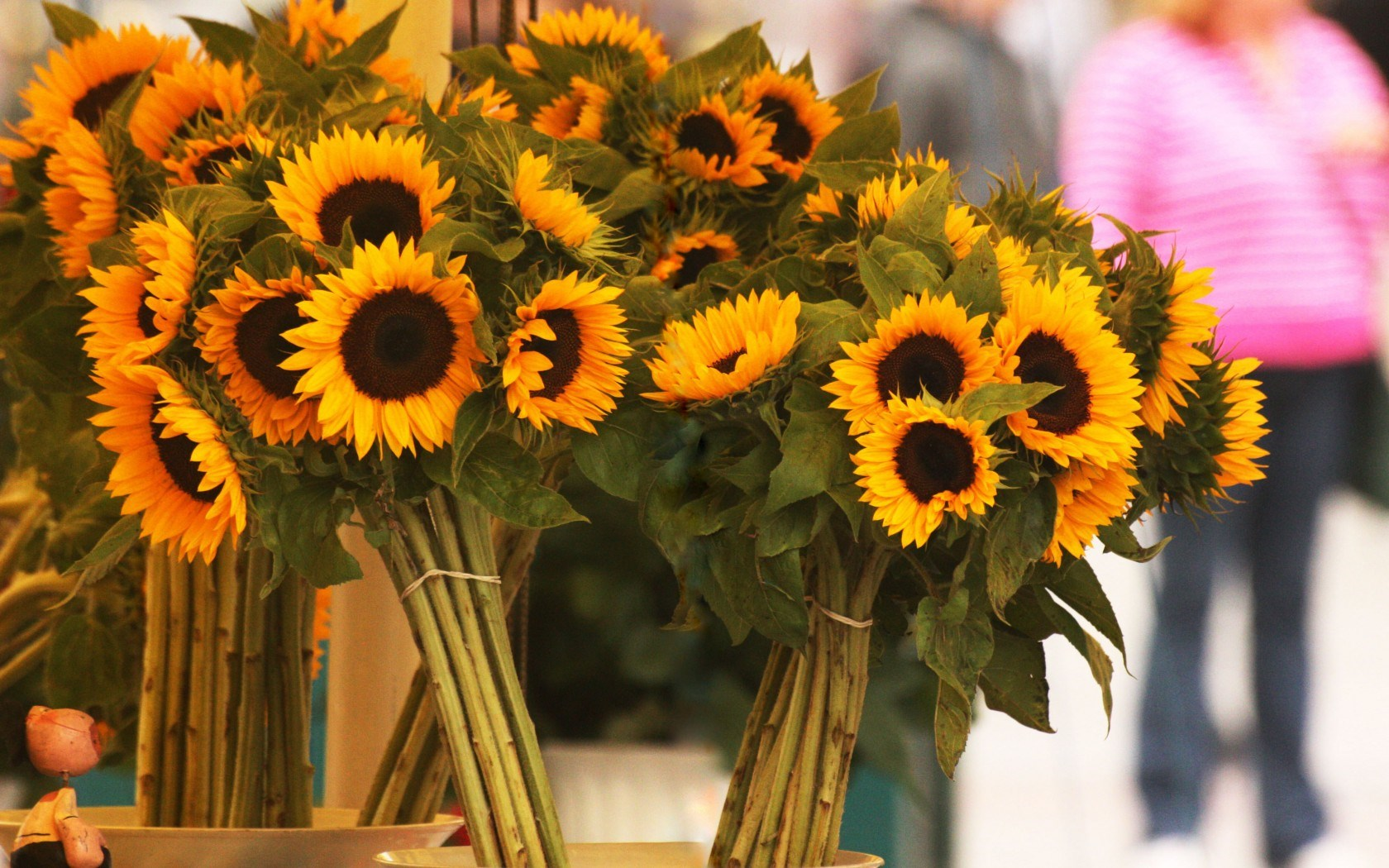 Sunflowers Bouquets Flowers