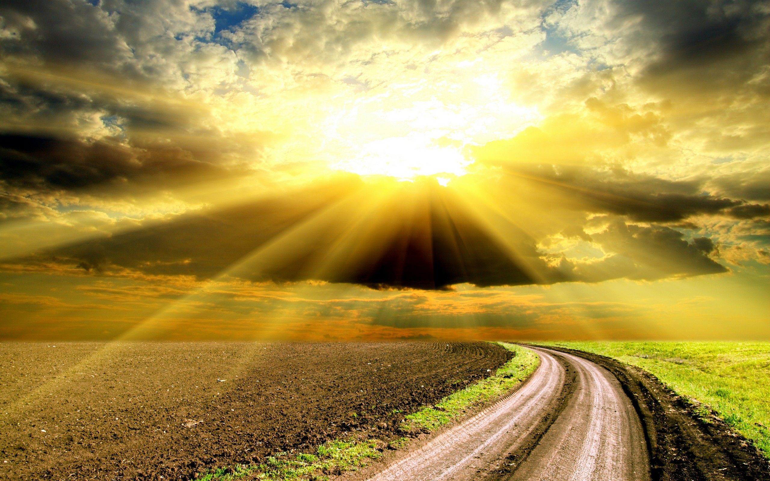 Sunlight pictures wallpaper 2560x1600 68954 - Stunning wallpaper for walls ...